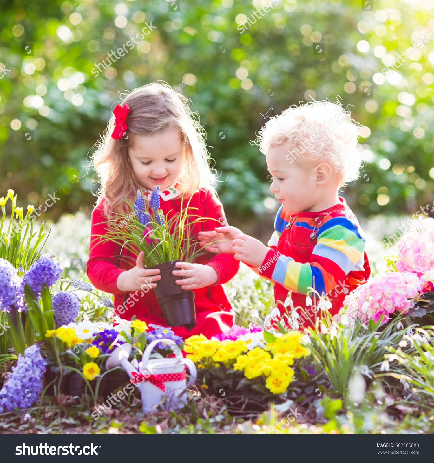 Children Planting Spring Flowers Sunny Garden Stock Photo Edit Now