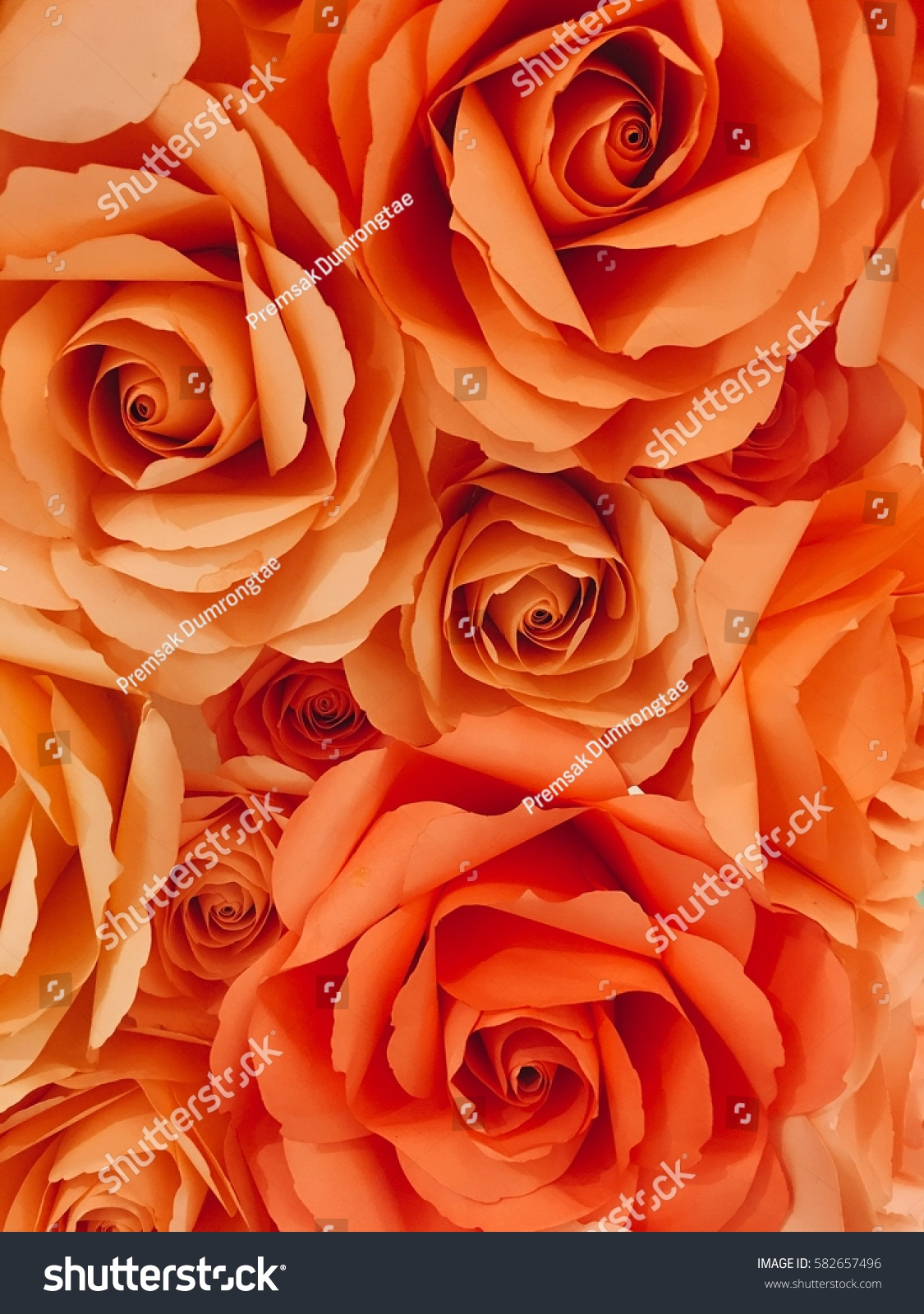 Rose Made By Paper Stock Photo Royalty Free 582657496 Shutterstock