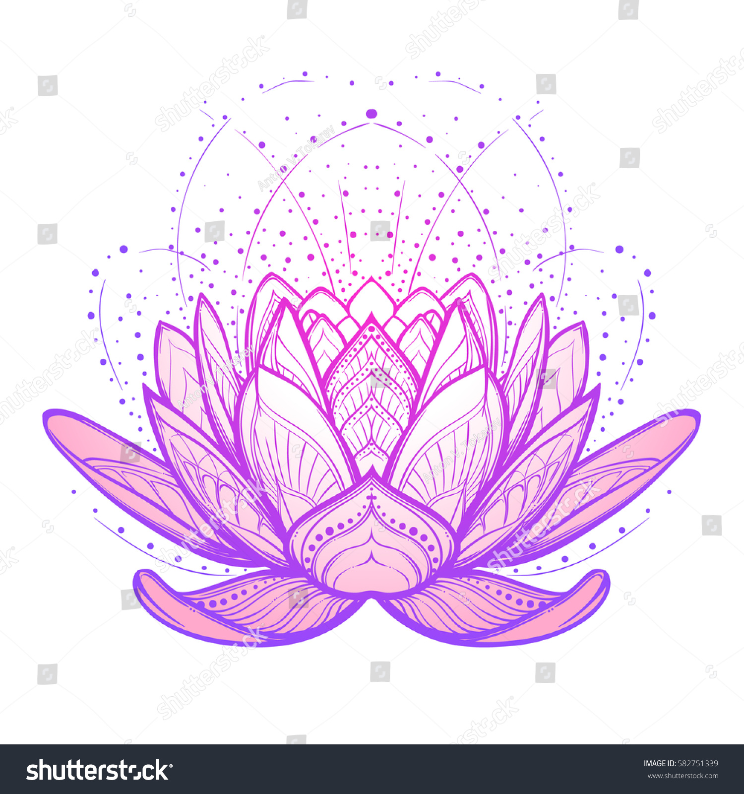 Lotus Flower Intricate Stylized Linear Drawing Stock Vector Royalty