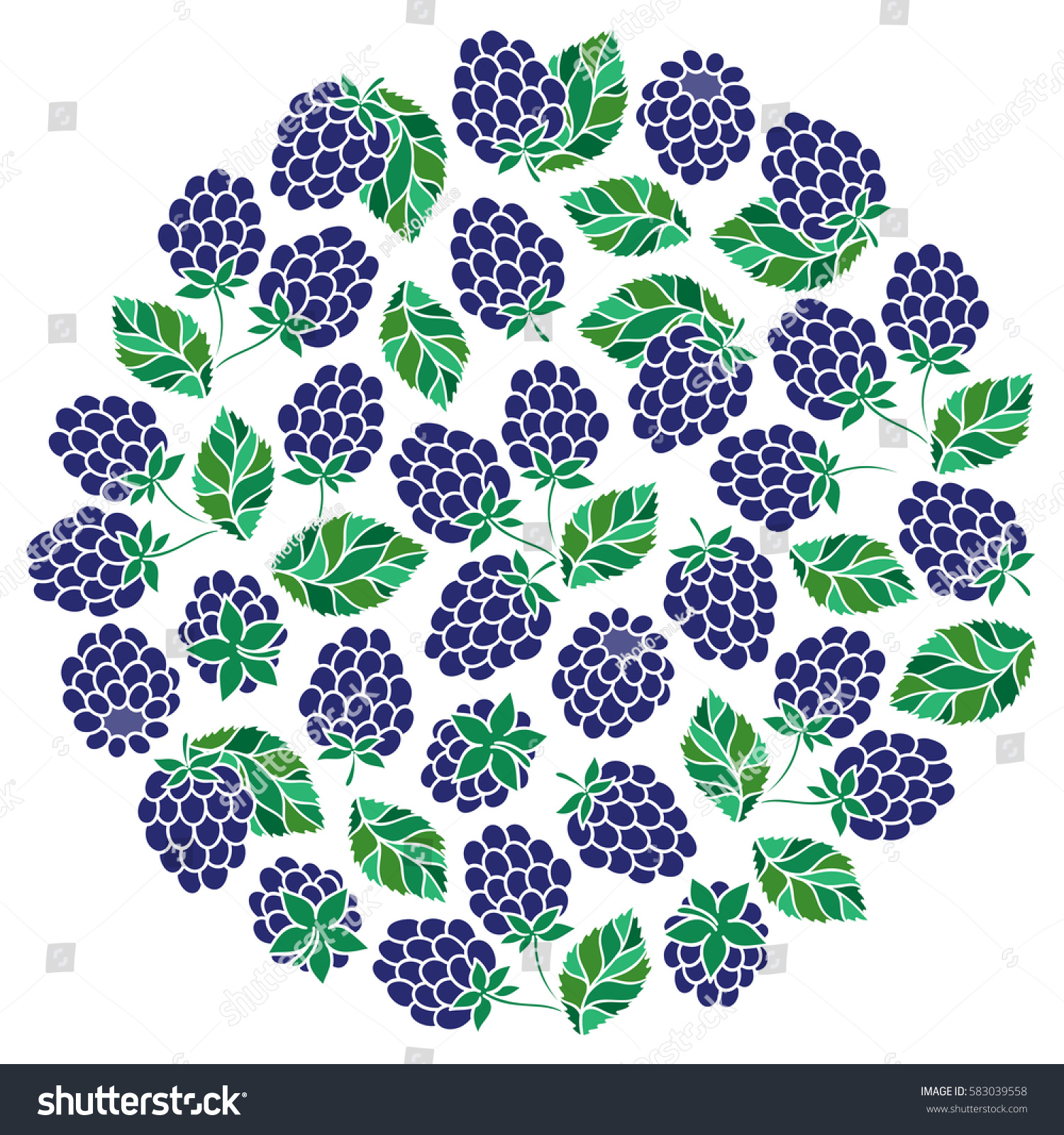 Natural Fruits Berries Round Symbol Fresh Stock Vector Royalty Free