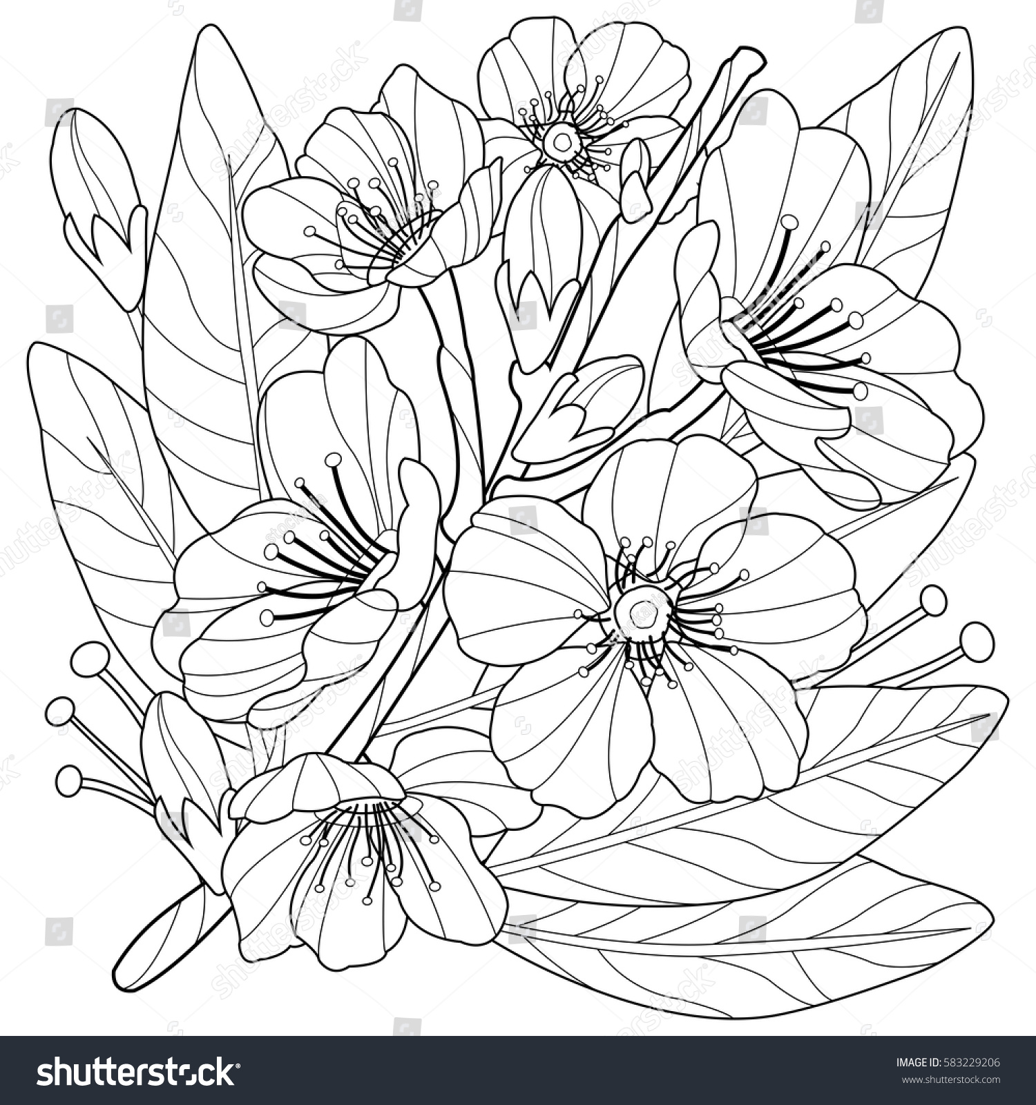 Coloring pages trees and flowers - Blossoming Almond Tree Branch With Flowers Coloring Book Page