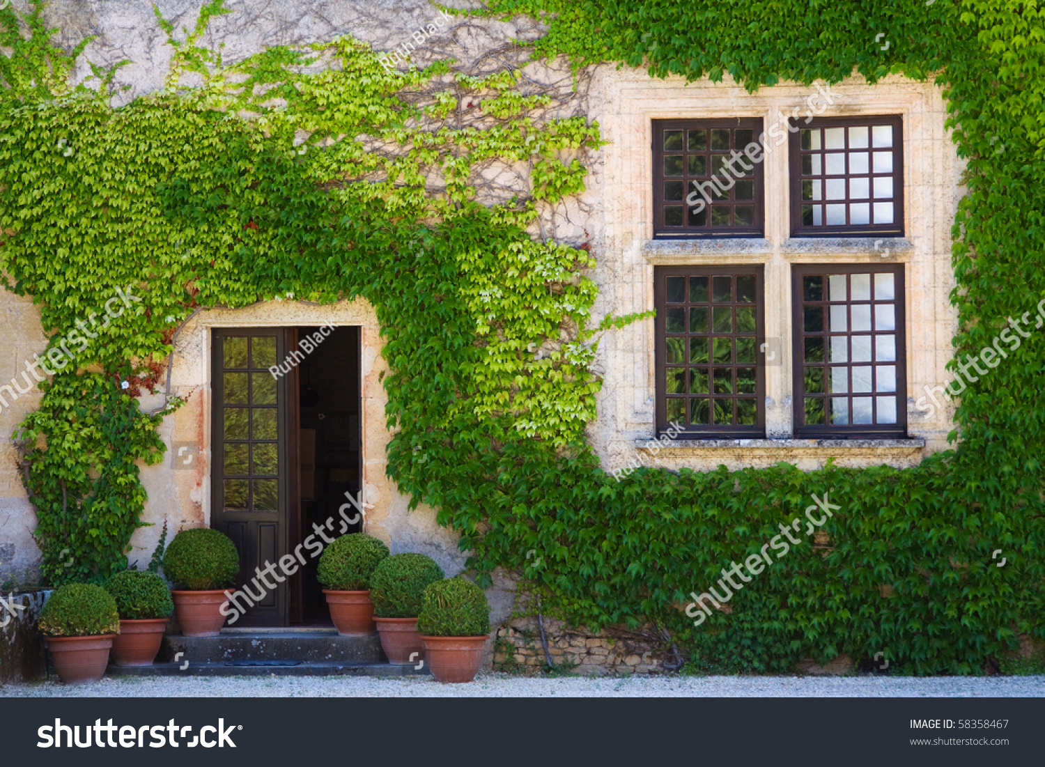 Ivy clad house photographed in the dordogne region of france stock photo 58358467 shutterstock - The shutter clad house ...