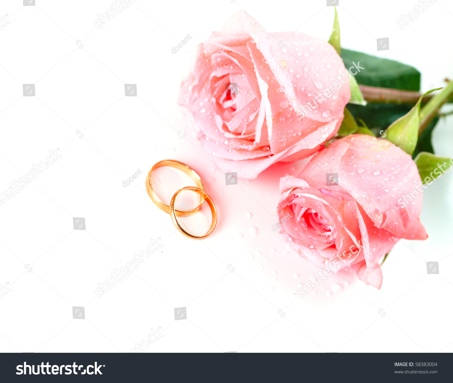 Roses Flowers Two Marriage Wedding Rings Stock Photo (100% Legal ...