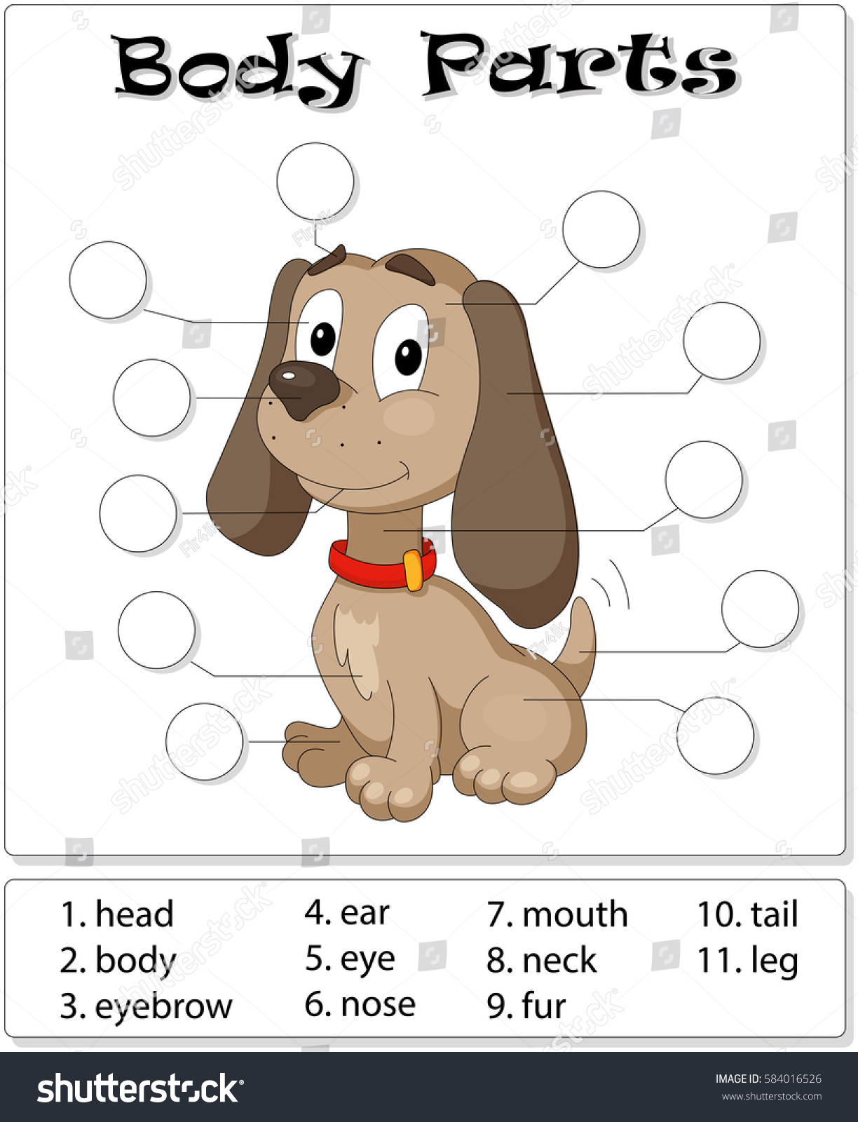 Dog Body Parts Animal Anatomy English Stock Vektorgrafik Lizenzfrei