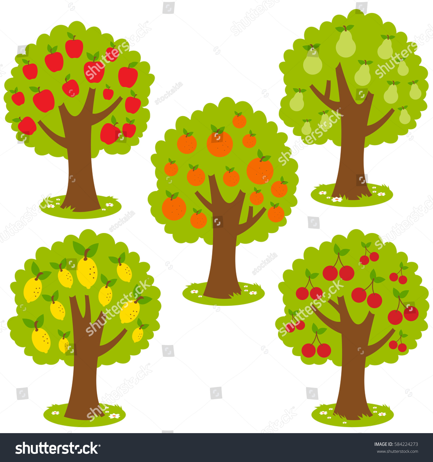 Set Fruit Orchard Trees Apple Pear Stock Illustration 584224273 ...