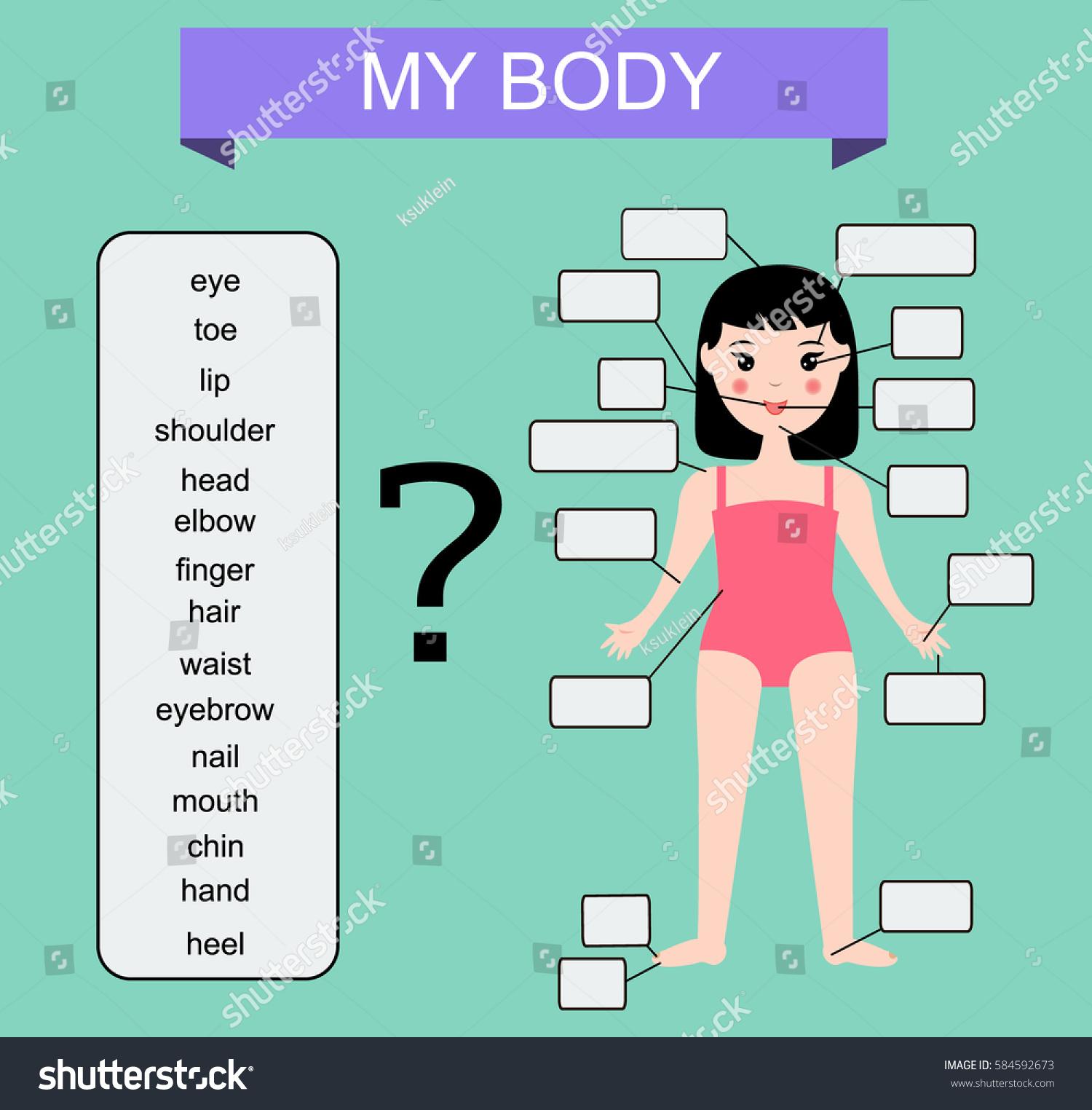 Human Body Educational Children Game Kids Stock Illustration ...