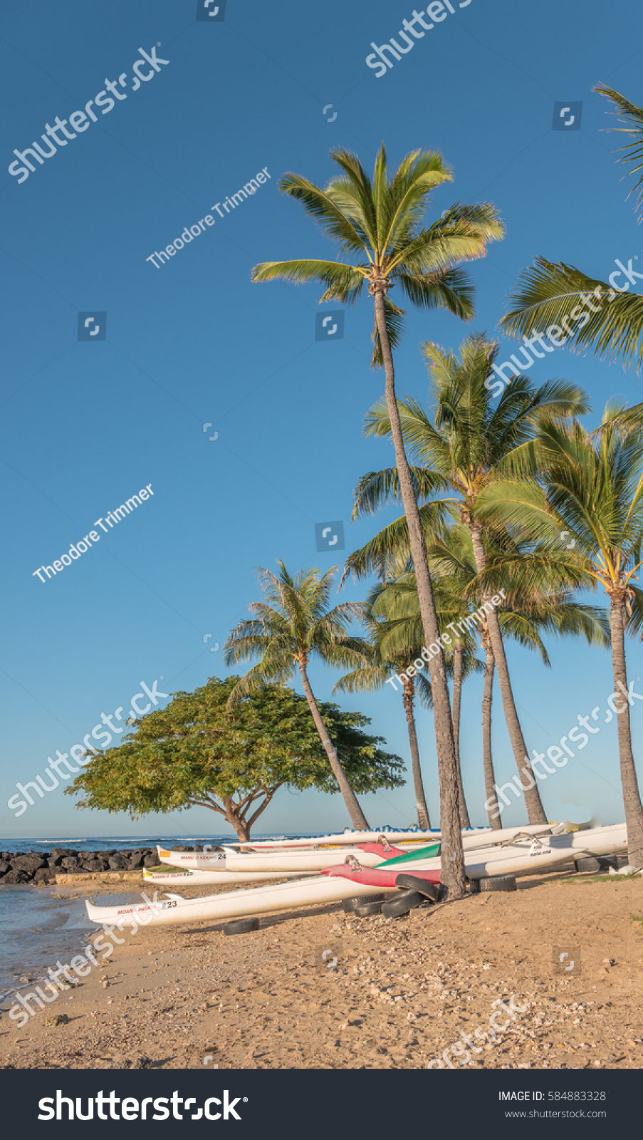 stock image of hawaiian - photo #19