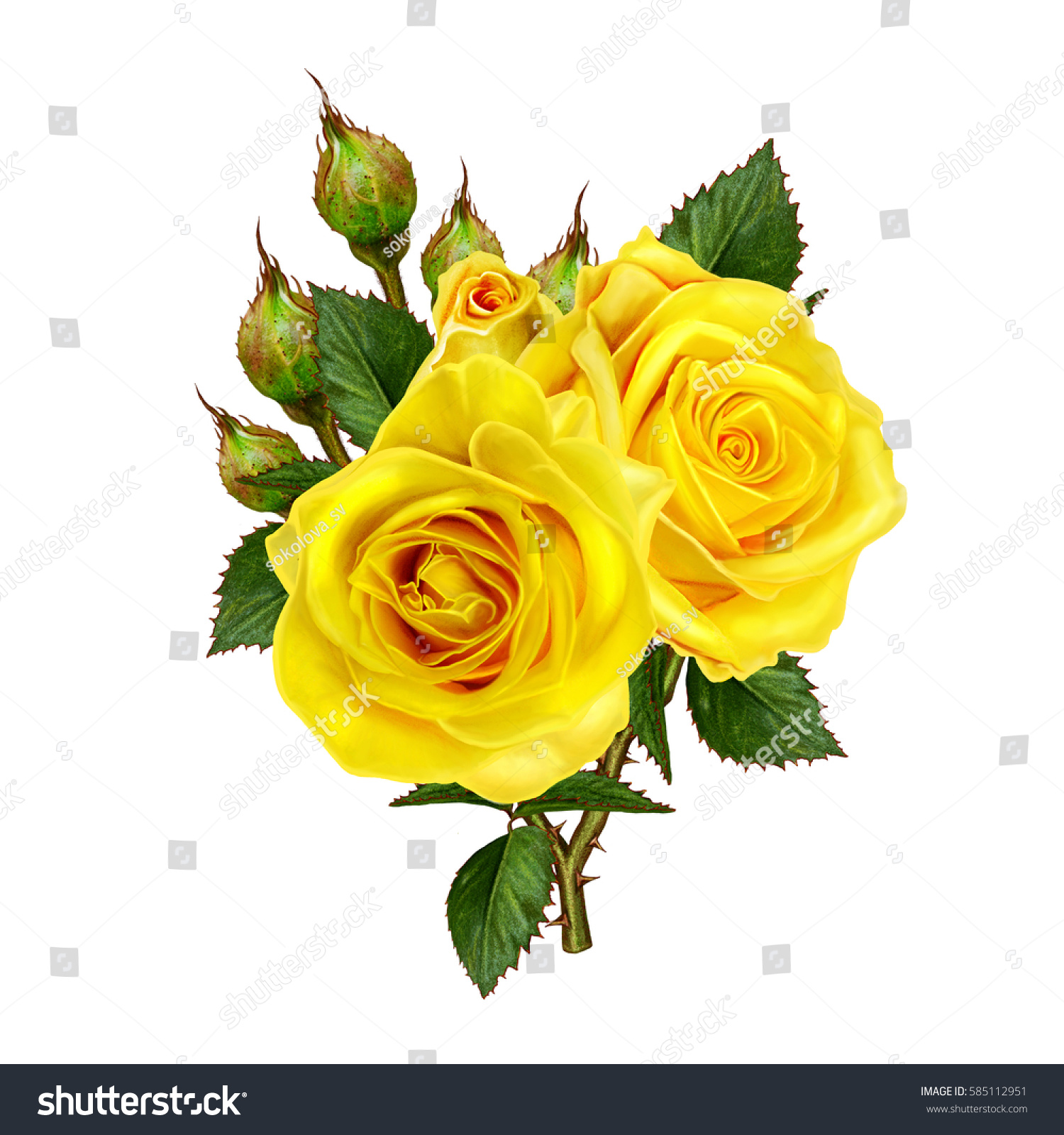 Flower Composition Beautiful Bouquet Yellow Roses Stock Illustration