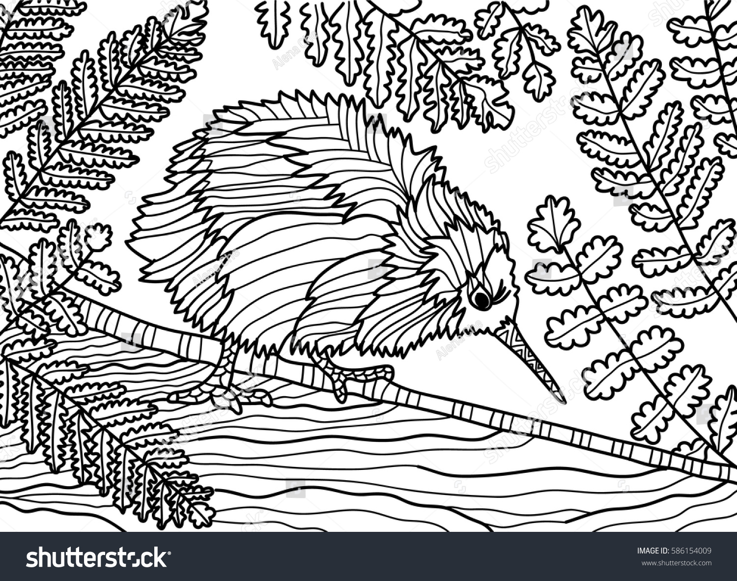 Coloring Book For Adults Monochrome Drawing Of A Kiwi Bird With Fern Ink