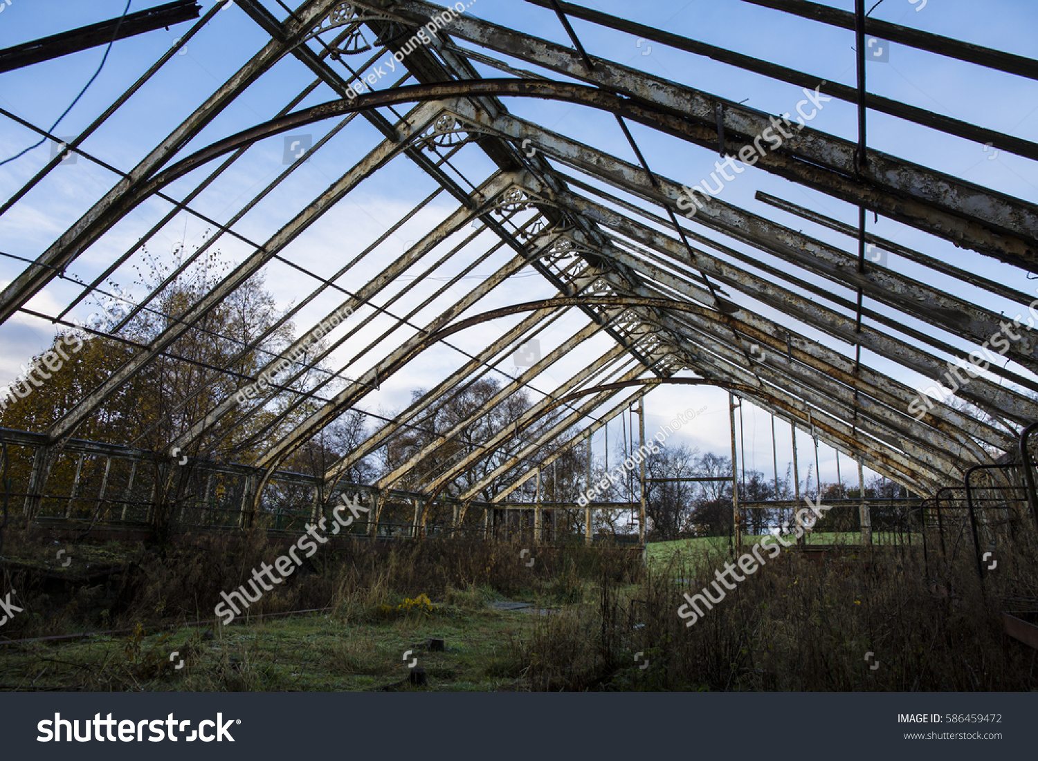 Winter Gardens Abandoned Hot House Glasgow Stock Photo (Edit ... on winter potted plants, winter shade plants, winter blooming plants, winter porch plants, winter container plants, winter hibiscus, winter yard plants, winter deck plants, winter perennial plants, winter interest plants, winter flowering plants, winter fragrant plants, winter house landscaping, winter planter plants, winter house art, winter hardy plants, winter outdoor plants, winter house cookies, great winter plants, winter patio plants,