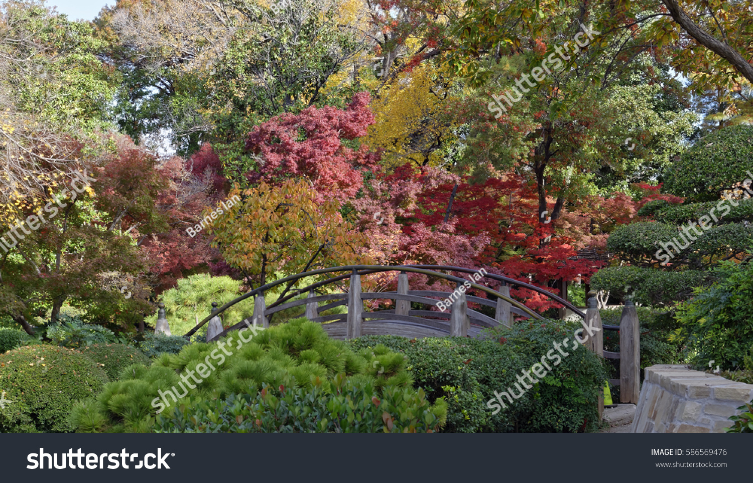 Fall Colors Japanese Garden Fort Worth Stock Photo (Edit Now ...