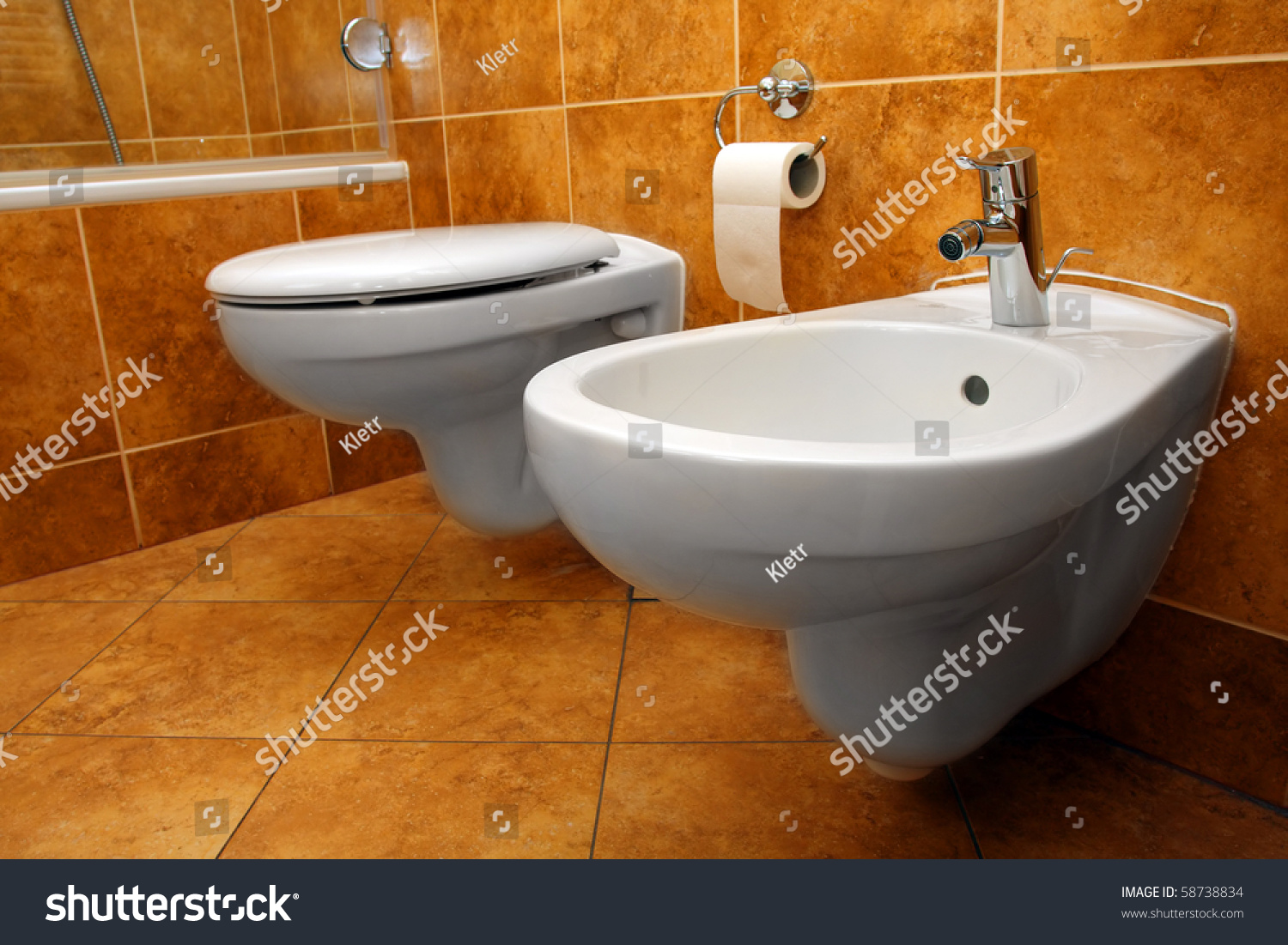 Luxury bathroom closeup - the water-closet and bidet. | EZ Canvas