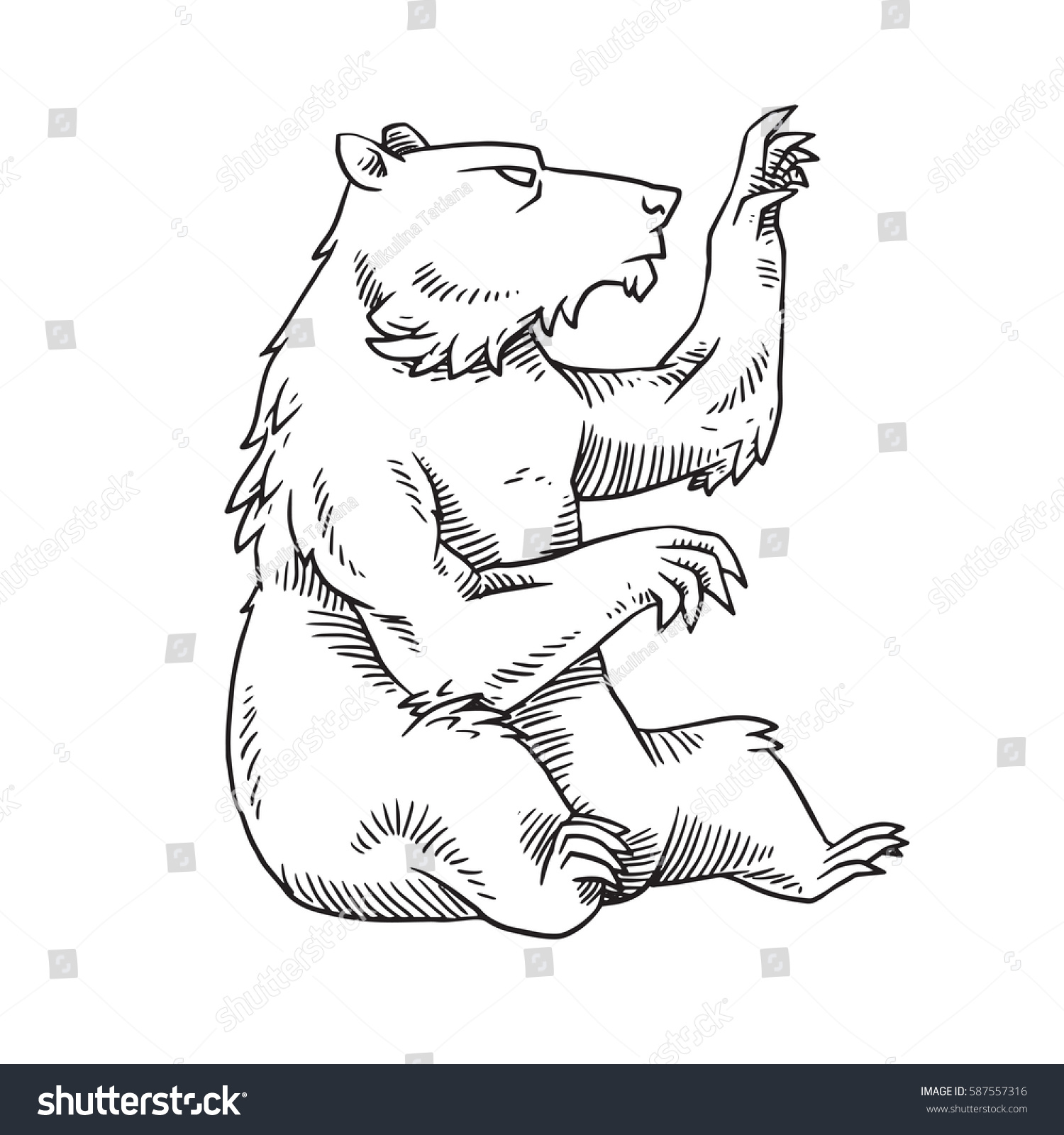 How to breed heraldic dragon - Vector Image Of A Heraldic Bear Sitting And Looking To The Right On A White Background