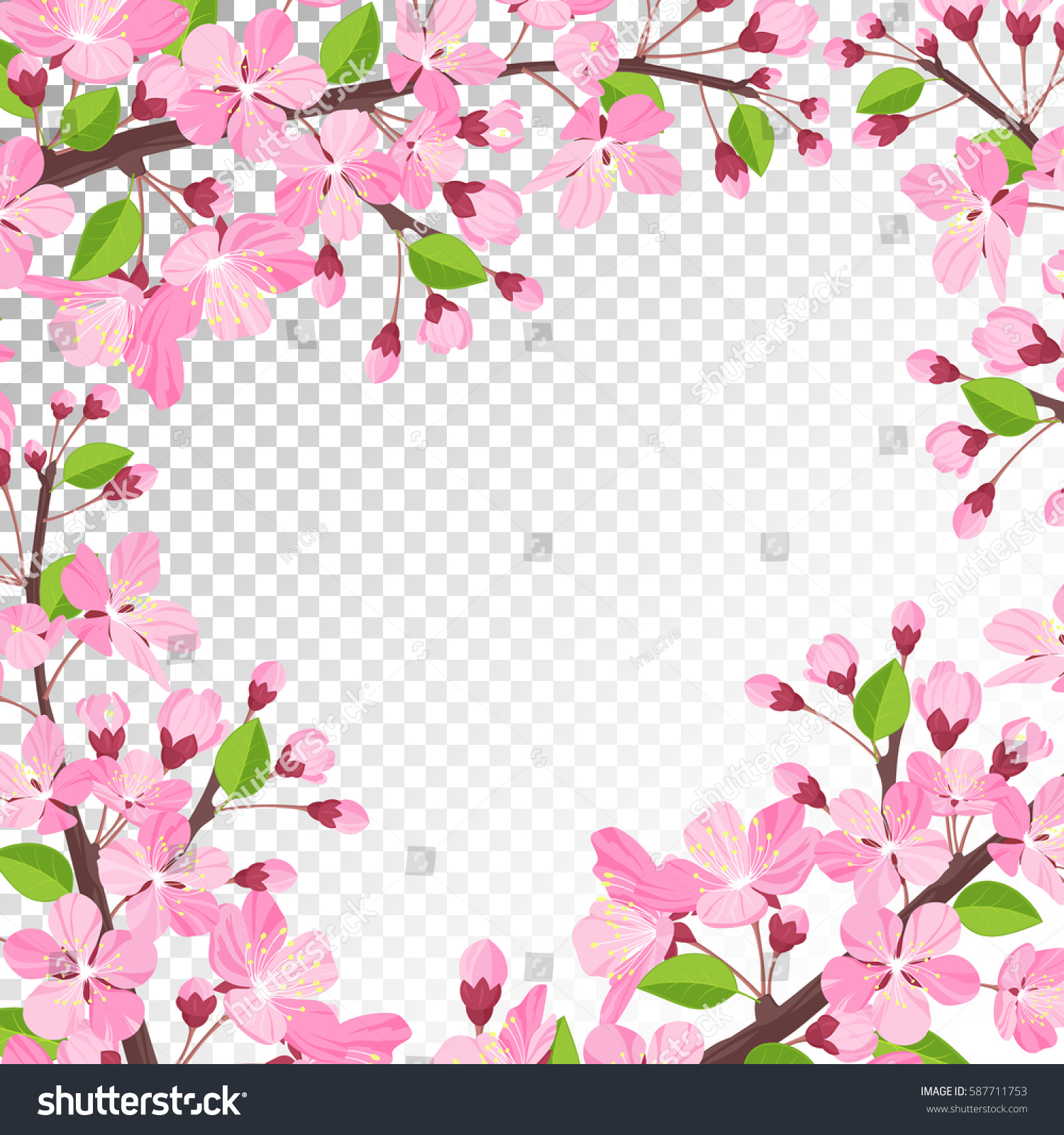 Cherry Blossom Background Pink Spring Flowers Stock Vector Royalty
