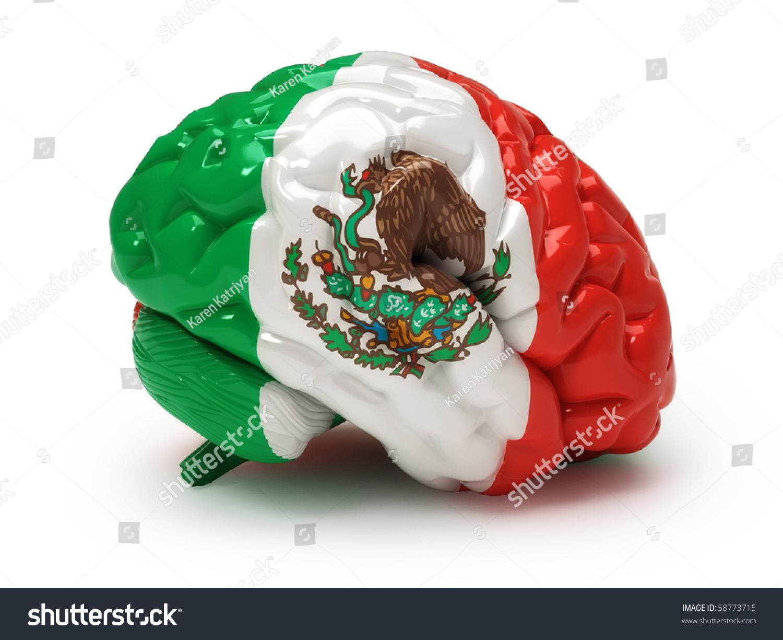 mexican flag on human brain stock illustration 58773715 shutterstock