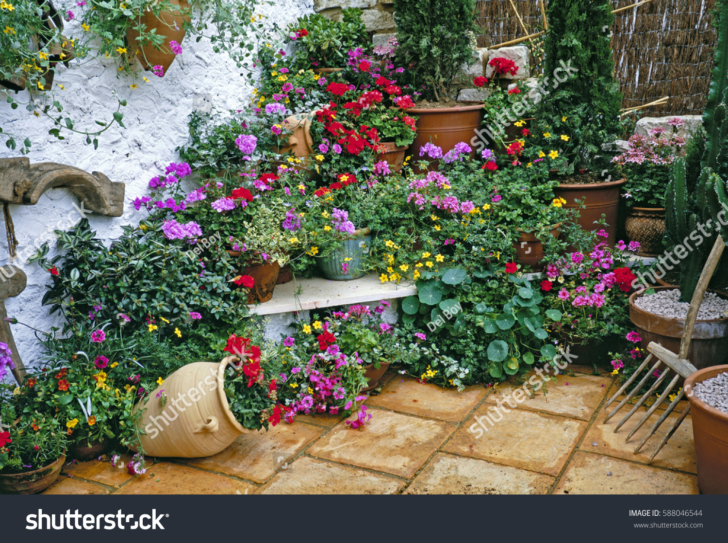 Mediterranean Garden With Colourful Display Of Plants