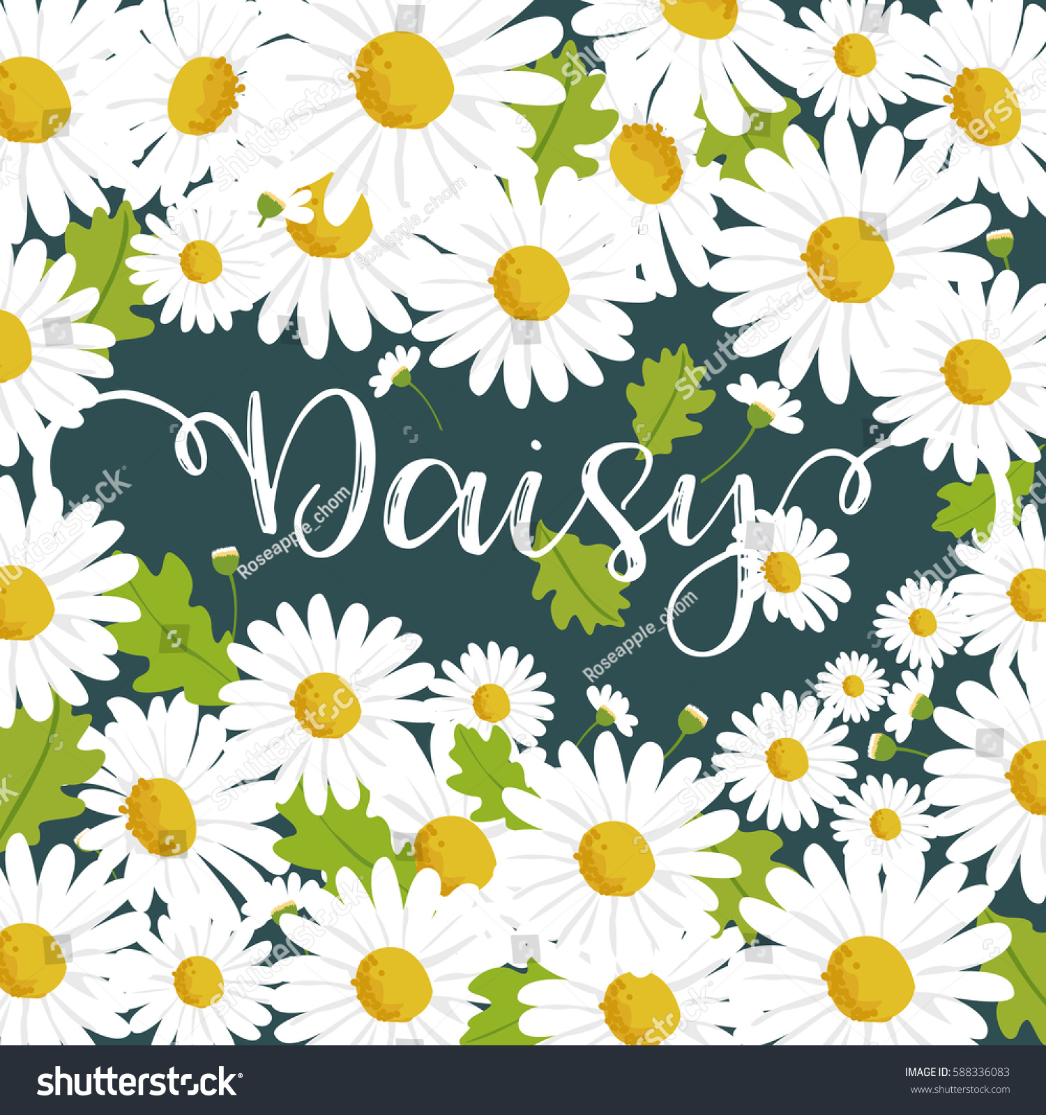 Daisy Flower Background Stock Vector Royalty Free 588336083