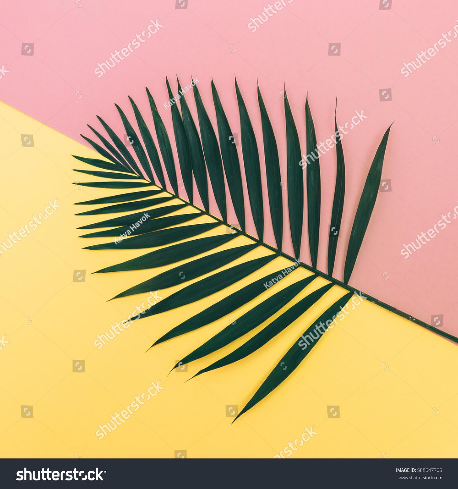 minimalistic leaf