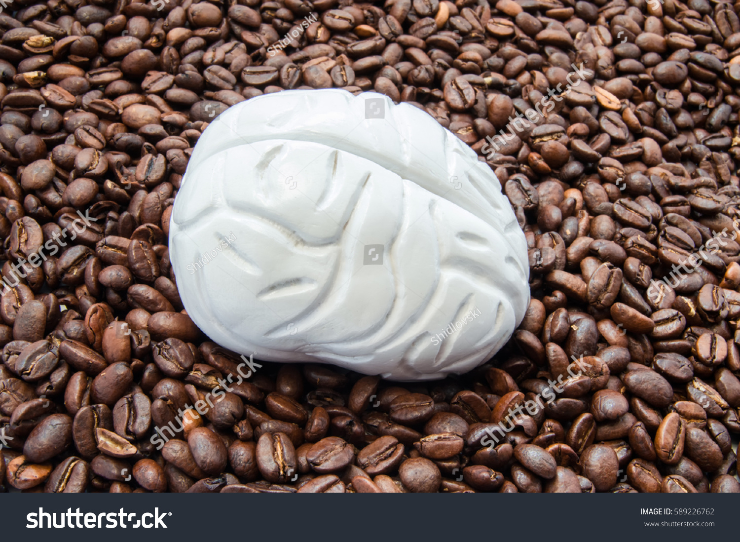 Brain Coffee Caffeine Brain Model Among Stock Photo 589226762 ...