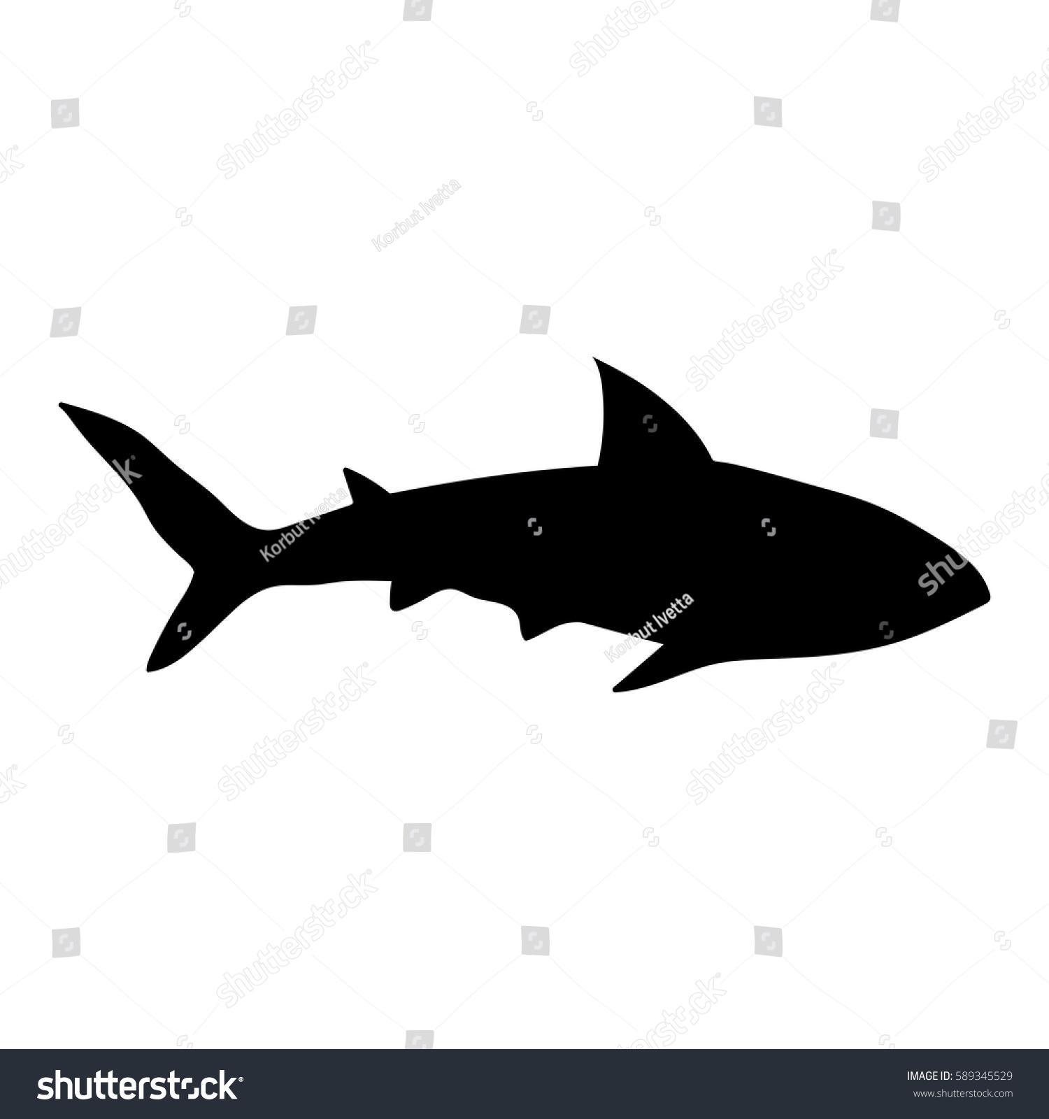 Uncategorized Drawn Shark hand drawn shark silhouette on white stock vector 589345529 background