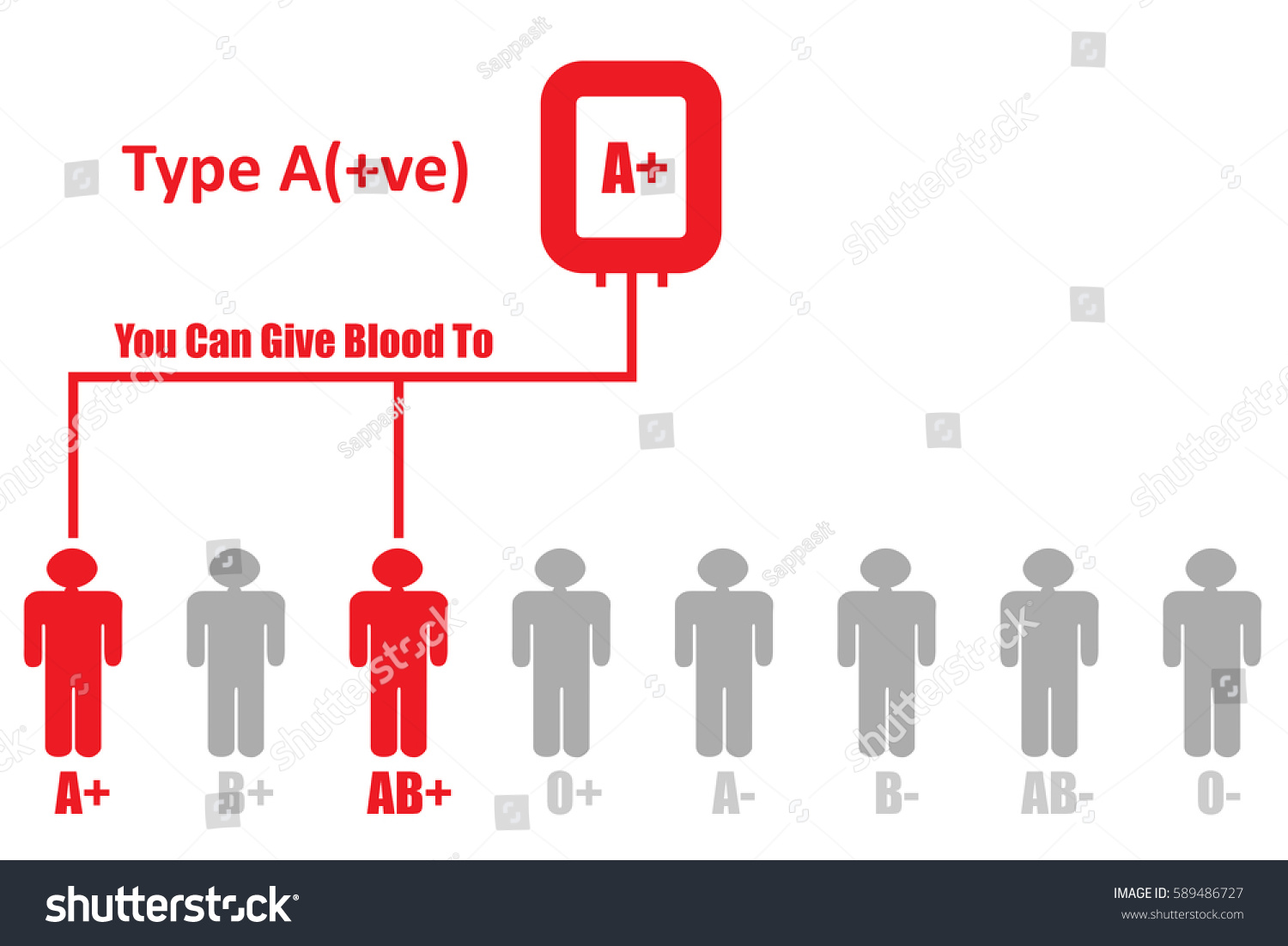 Blood donationblood group type positive can stock illustration blood donationblood group type a positive can give blood to pooptronica