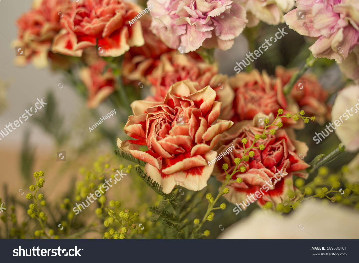 Bouquet carnations different color many beautiful stock for Different color roses bouquet