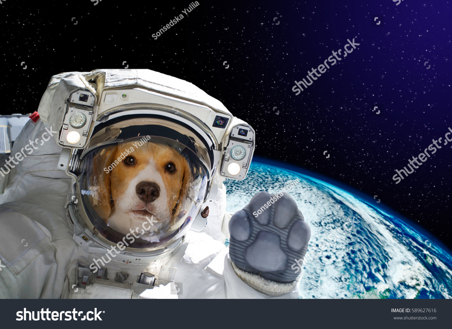 Portrait of a dog astronaut in space on background of the globe. Elements  of this