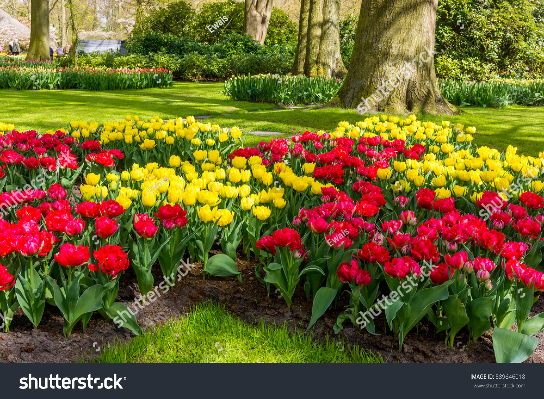 Flower Garden Beautiful Park Garden Spring Stock Photo Edit Now