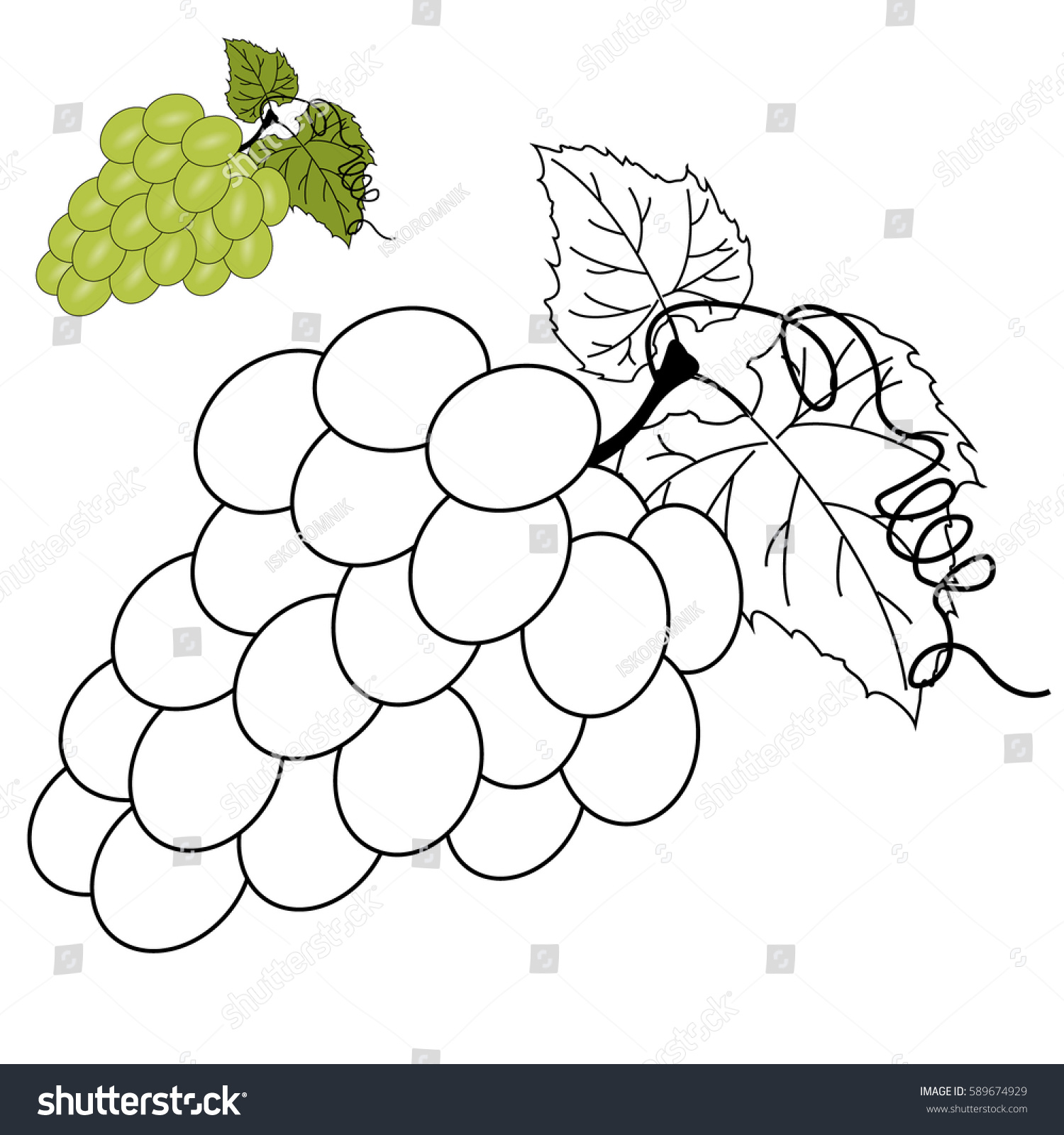 Vector Coloring Page Children Grapes Stock Vector 589674929 ...