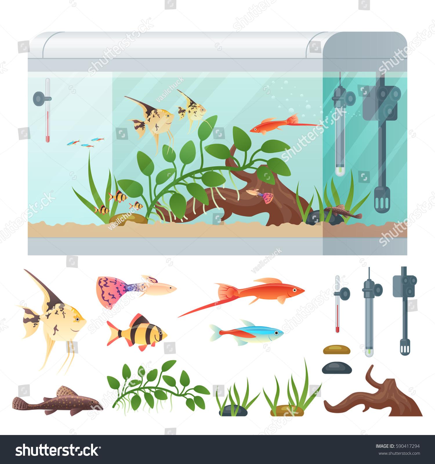 Infographics Aquarium Set Underwater Vector Elements Stock Photo ...