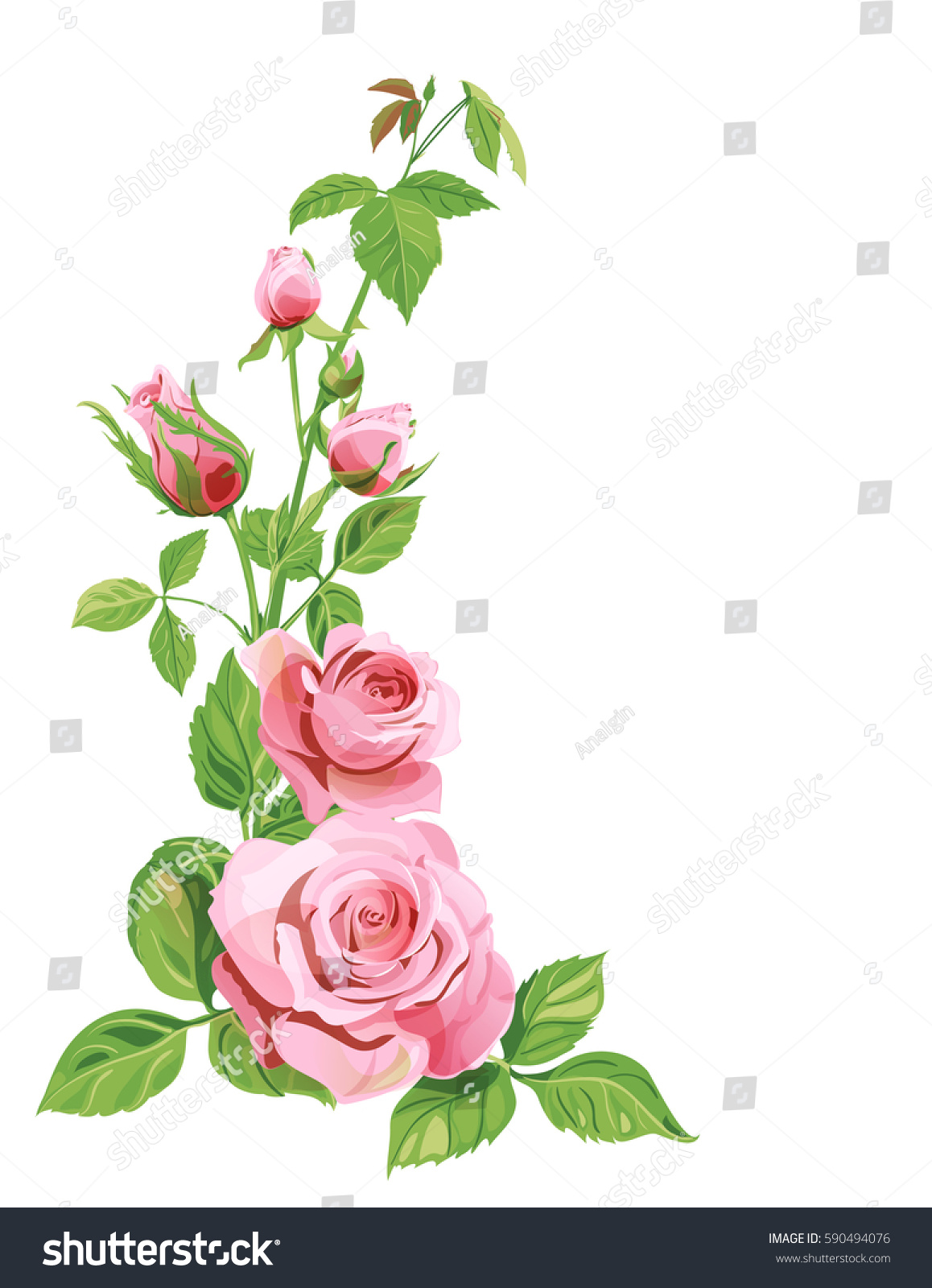 Bouquet Roses Pink Red Flowers Buds Stock Vector 590494076 ...