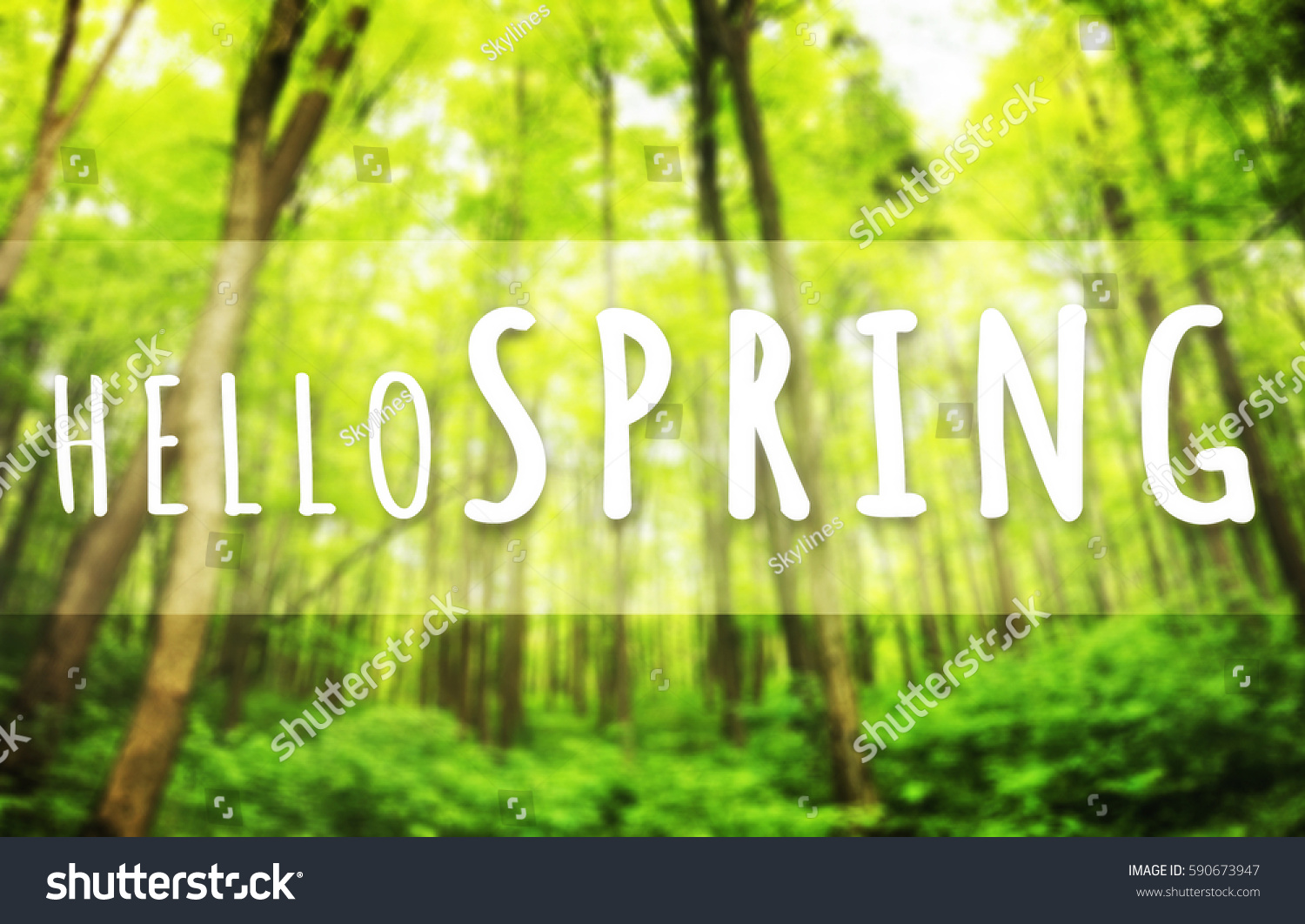 Beautiful greeting card words welcome spring stock photo 590673947 beautiful greeting card words welcome spring stock photo 590673947 shutterstock m4hsunfo