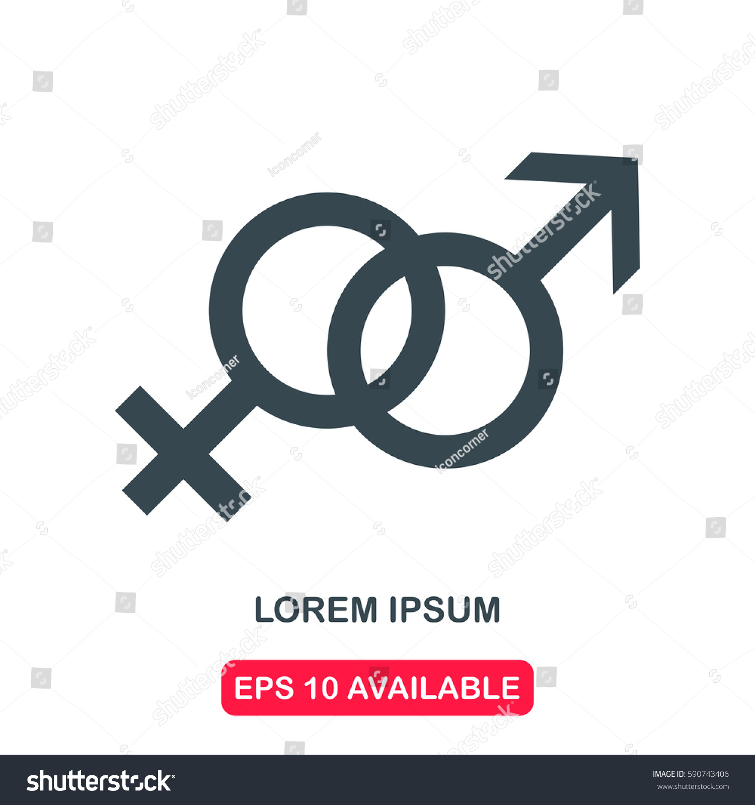 Male Female Symbol Icon Vector Stock Vector Royalty Free 590743406
