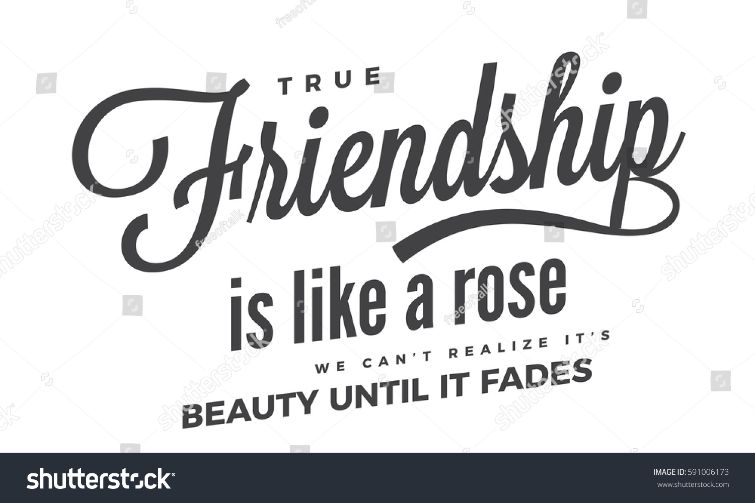 Quote About True Friendship True Friendship Like Rose We Cant Stock Vector 591006173