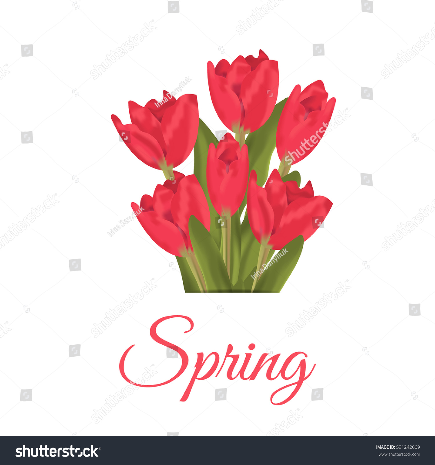 Spring text red tulips flower bouquet stock vector royalty free spring text with red tulips flower bouquet vector illustration tulips beauty spring pink blossom izmirmasajfo
