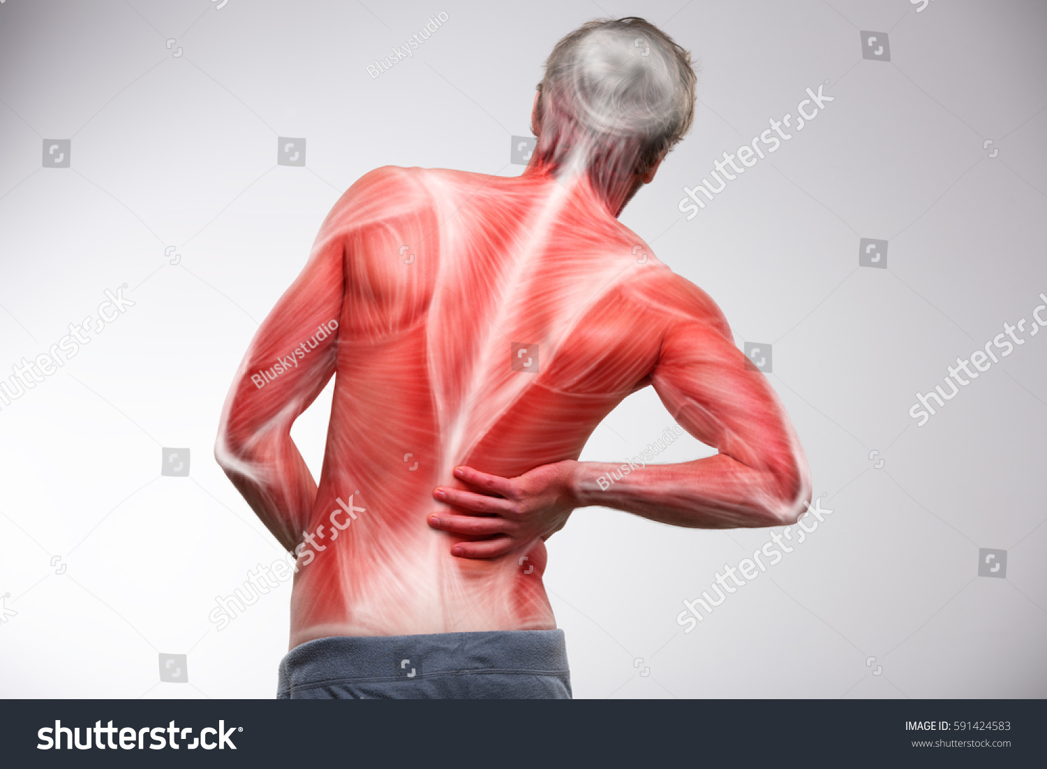 Image Result For Back Pain Muscle