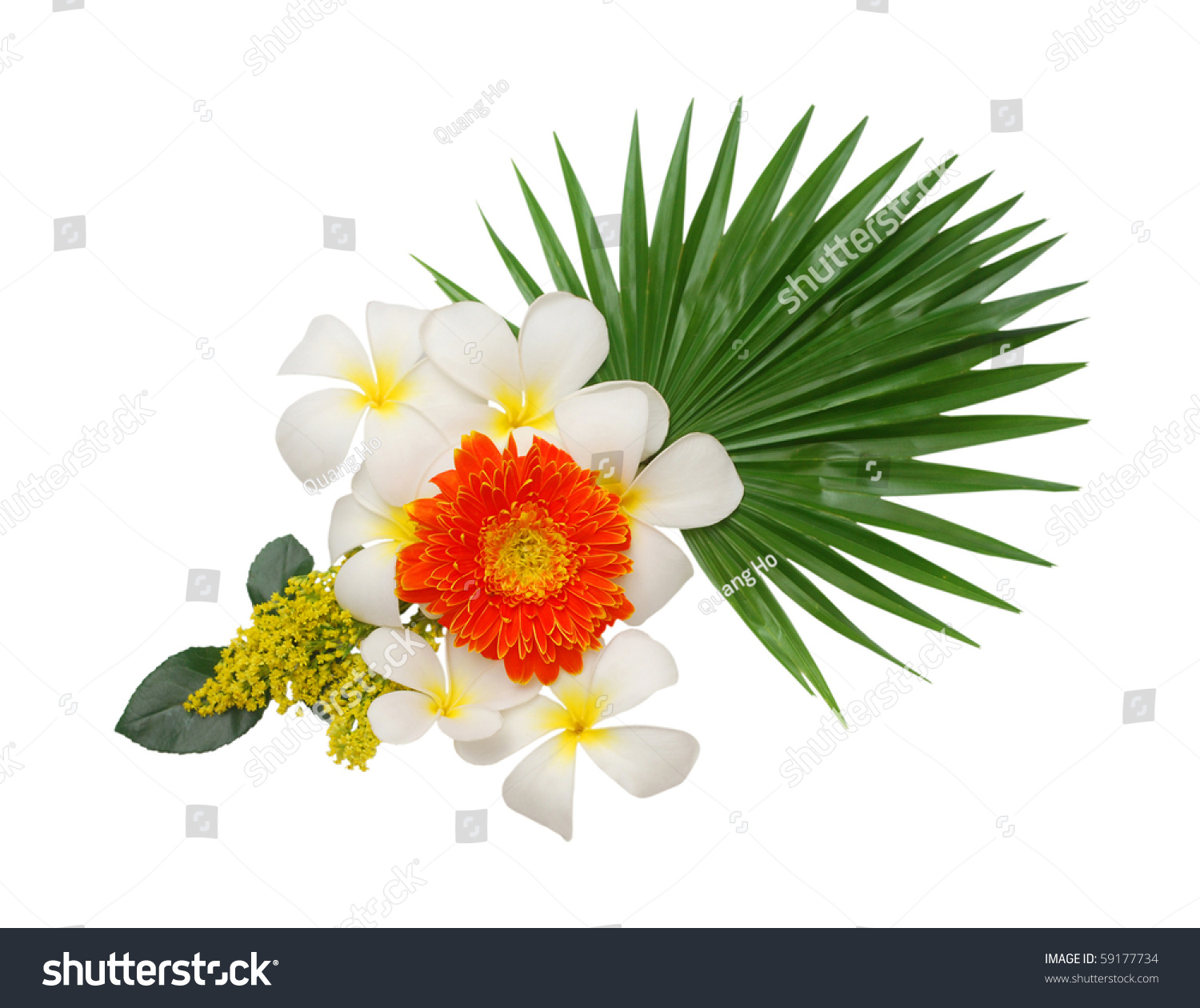 goodluck flower bouquet stock photo   shutterstock, Beautiful flower