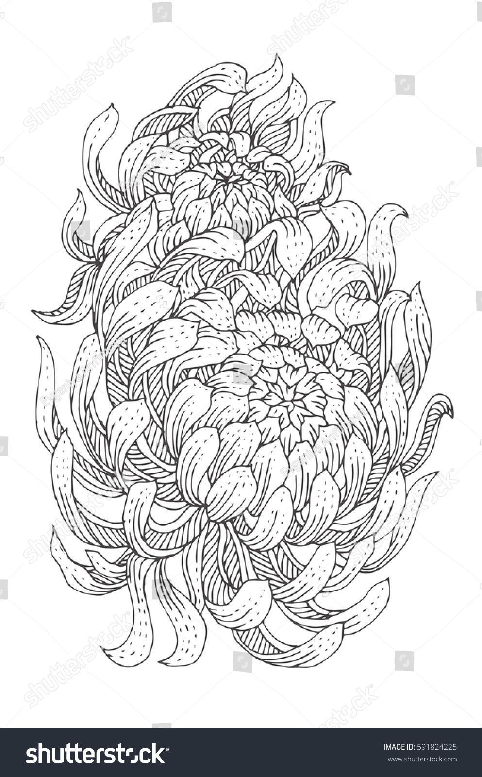 chrysanthemum book coloring pages eliolera - Chrysanthemum Book Coloring Pages