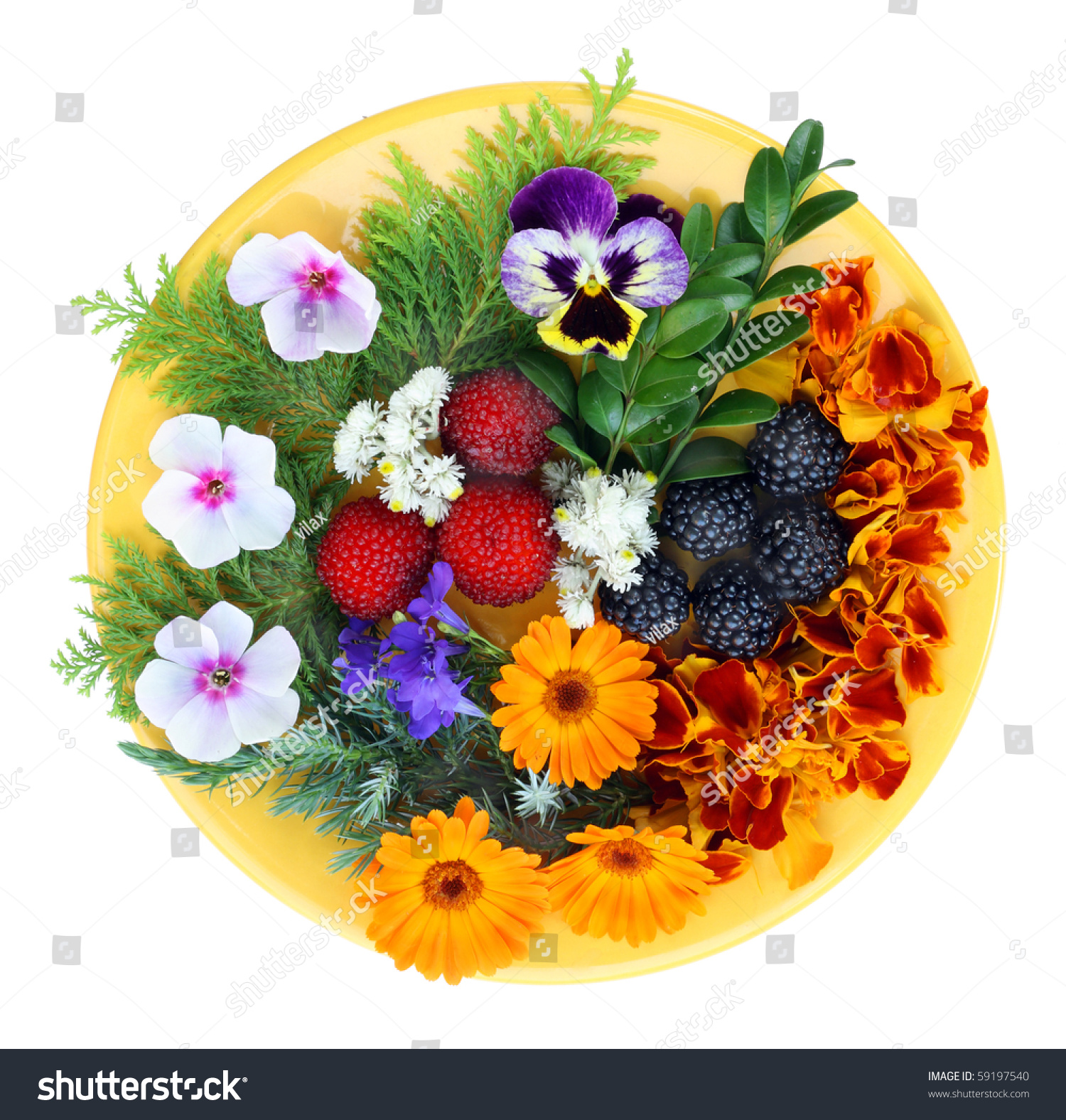 August flowers berries on yellow plate stock photo edit now august flowers and berries on a yellow plate isolated on white mightylinksfo