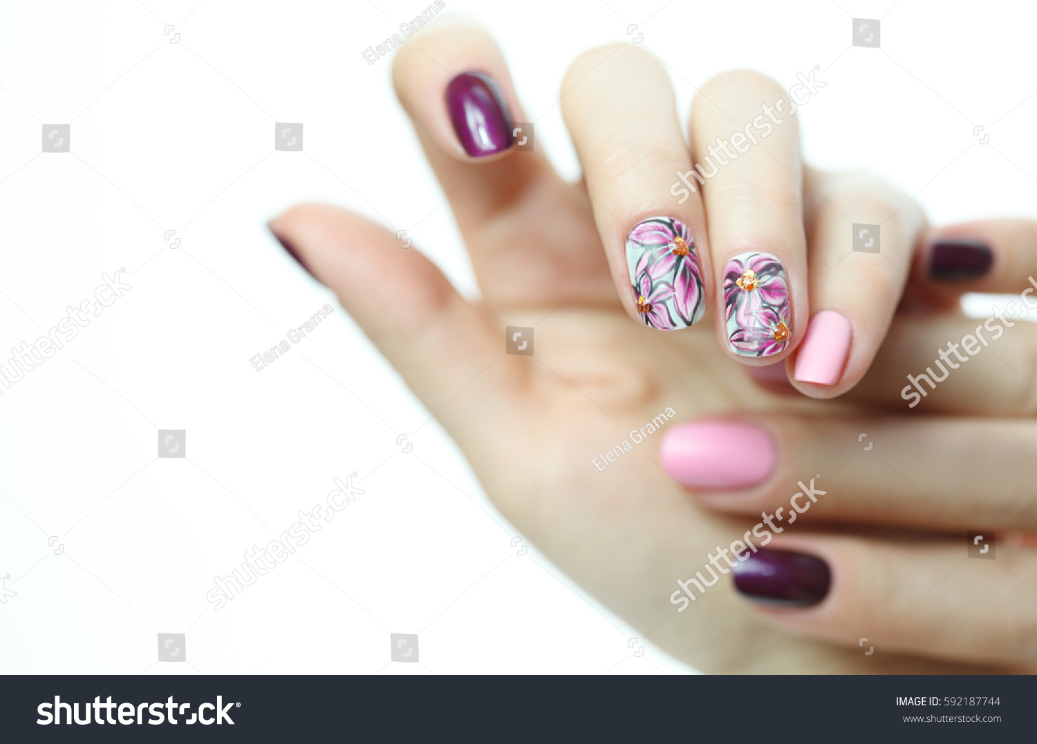 Nail Design Manicure Nail Paint Beautiful Stock Photo (Download Now ...