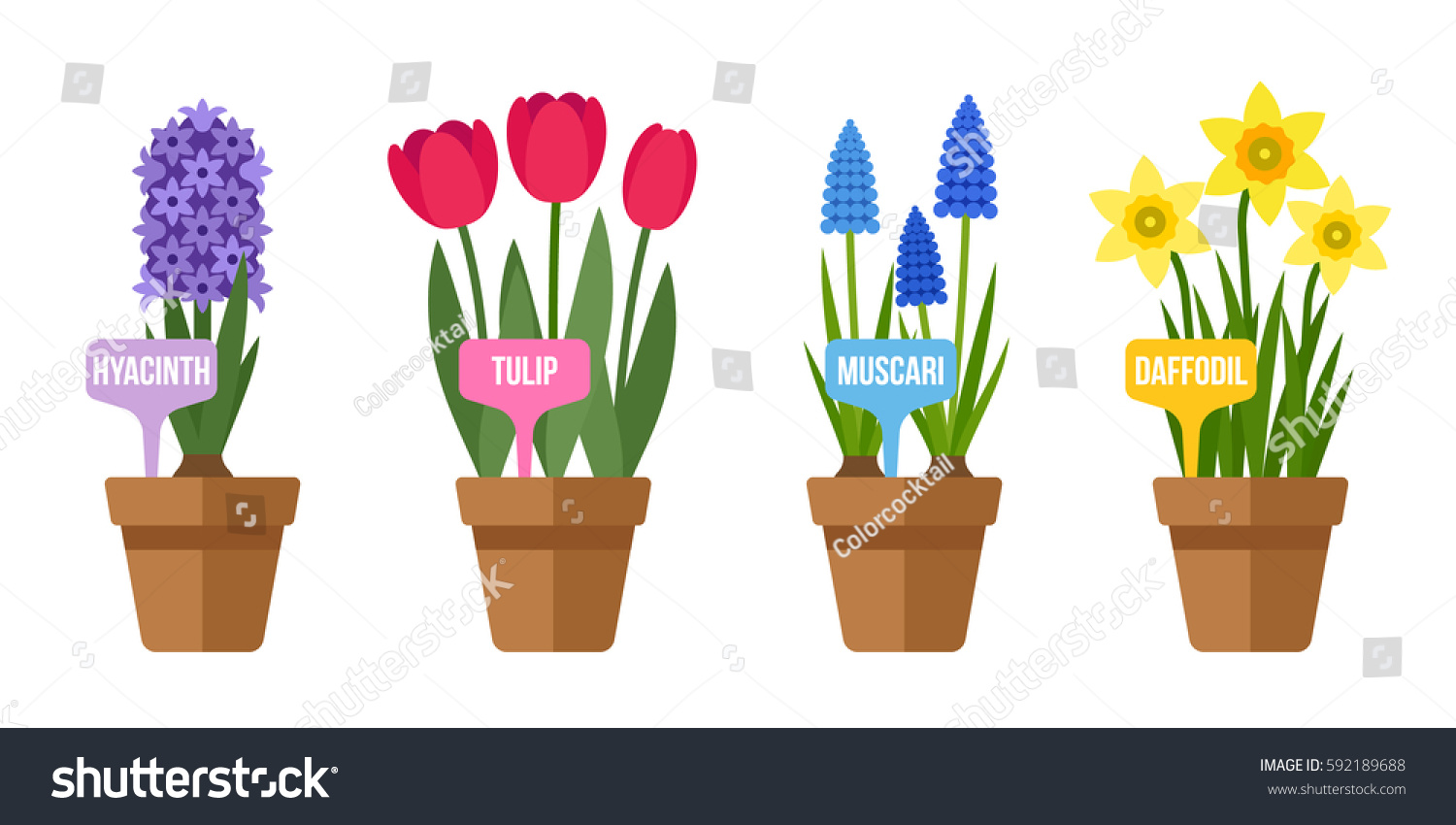 Vector Set Potted Spring Flowers Labels Stock Vector Royalty Free