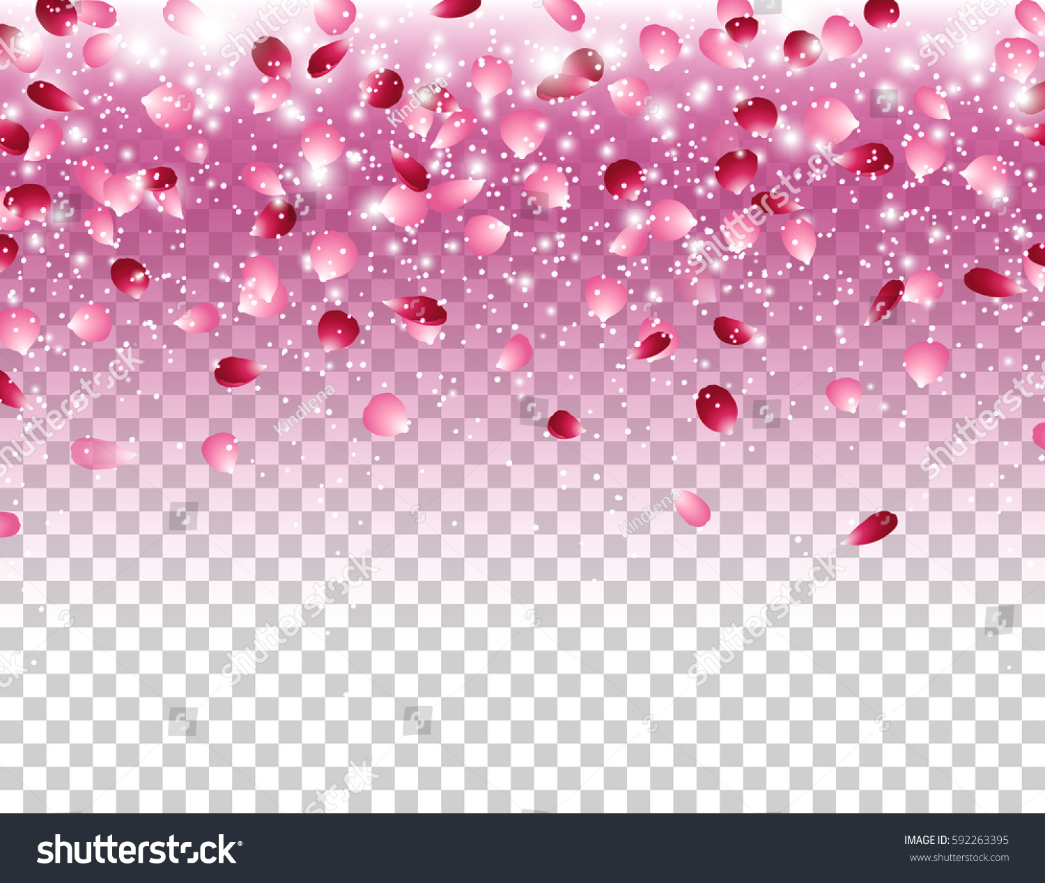 Pink Falling Flowers Petals Glowing Lights Stock Vector Royalty