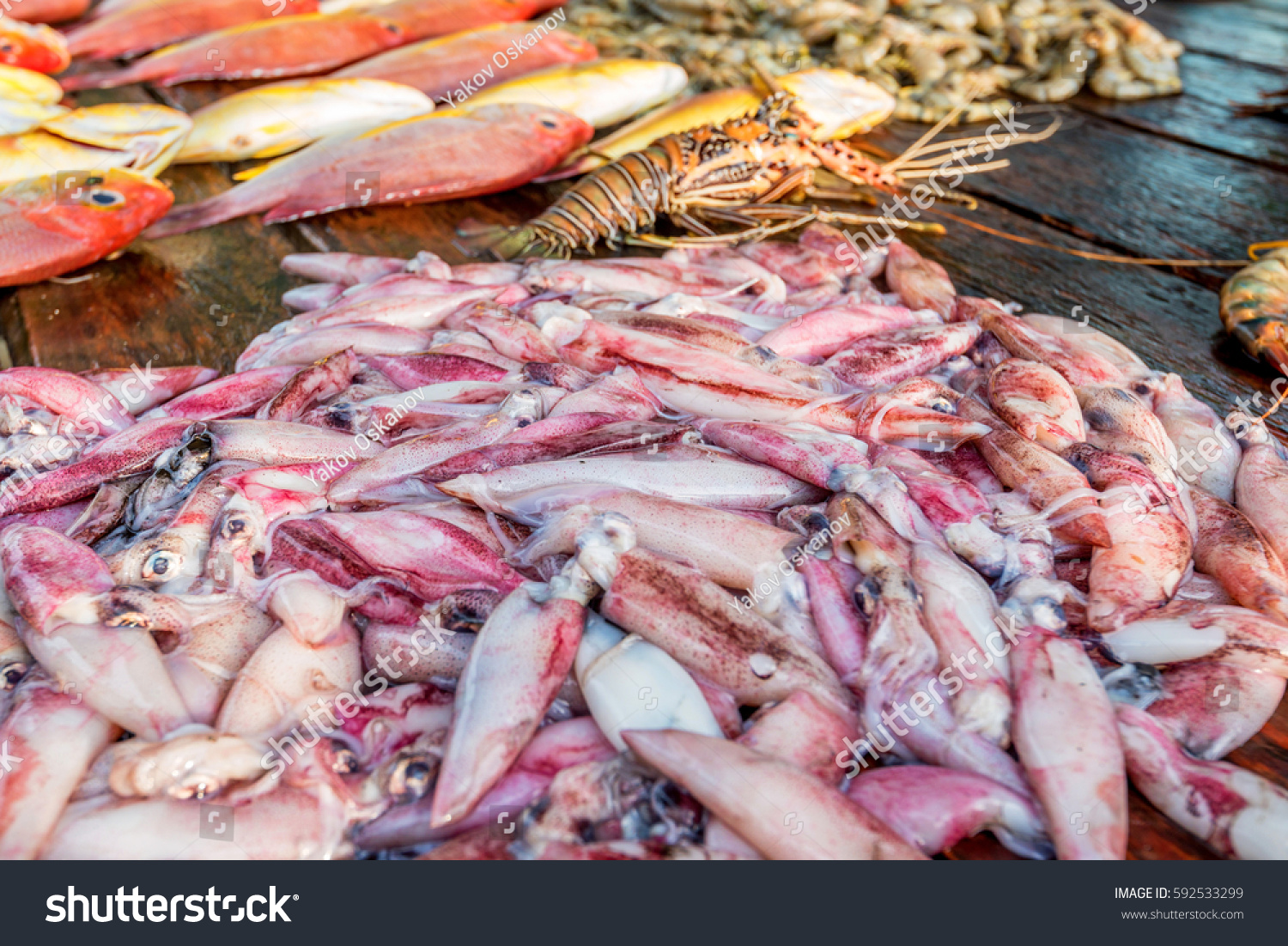 Fresh raw fish seafood market stock photo 592533299 for Fish and seafood