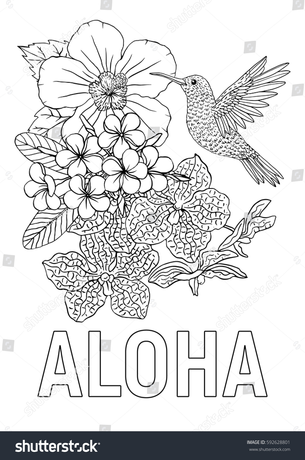 Aloha Coloring Book Page Hummingbird Hibiscus Stock Vector (Royalty ...