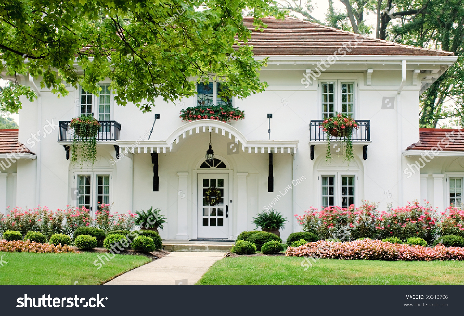 White House Pink Flowers Stock Photo Edit Now 59313706 Shutterstock