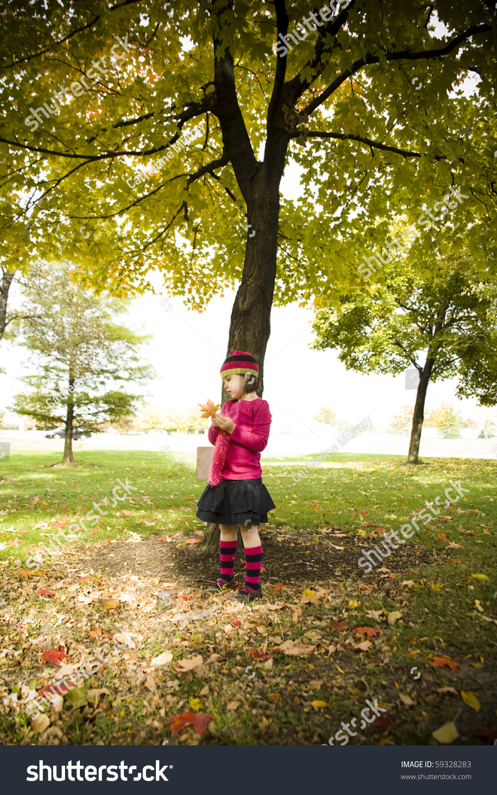 Five Year Old Girl Standing Under An Autumn Tree Stock