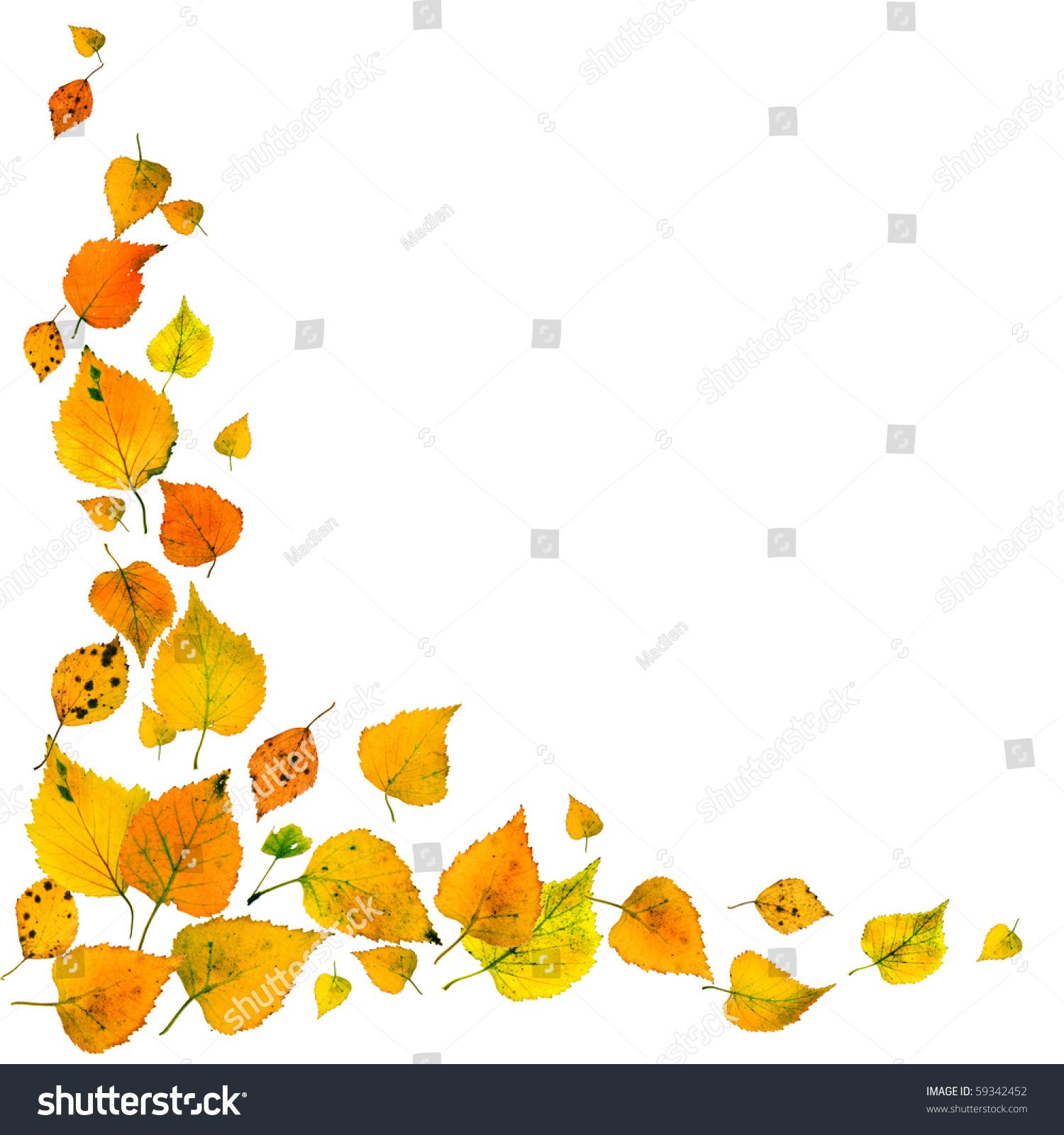 Beautiful Autumn Leaves Falling Corner Border Stock Photo ...