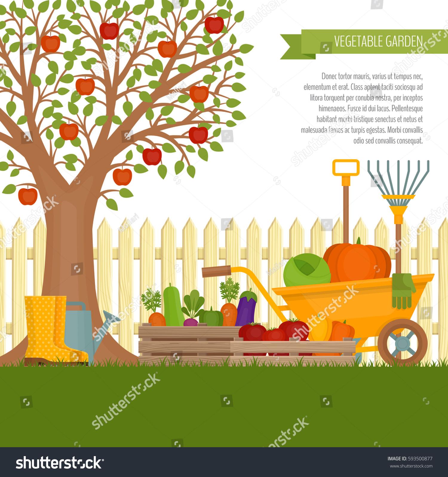 Vegetable Garden Concept Gardening Banner Vegetable Stock Vector