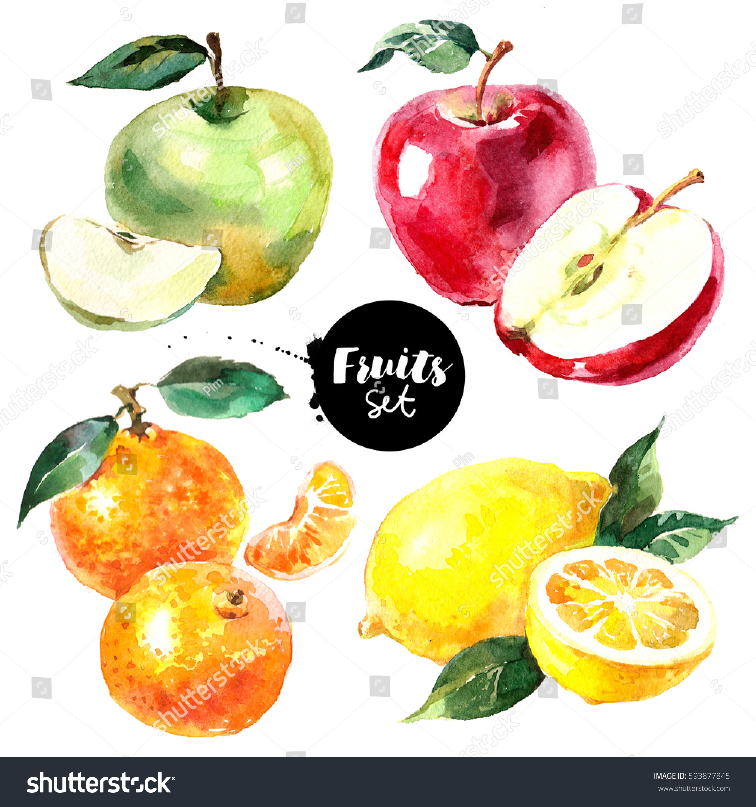 watercolor apples fruits vegetables tangerine lemon natural organic illustration shutterstock isolated painted eco fresh background food