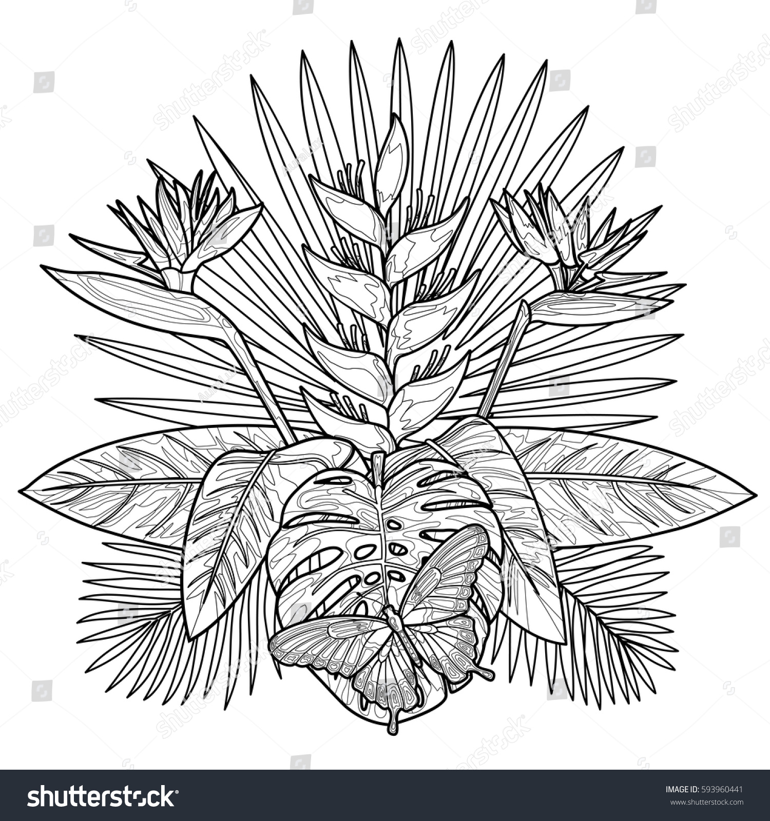 Tropical bouquet flowers leaves butterfly tropic stock Coloring book mockup